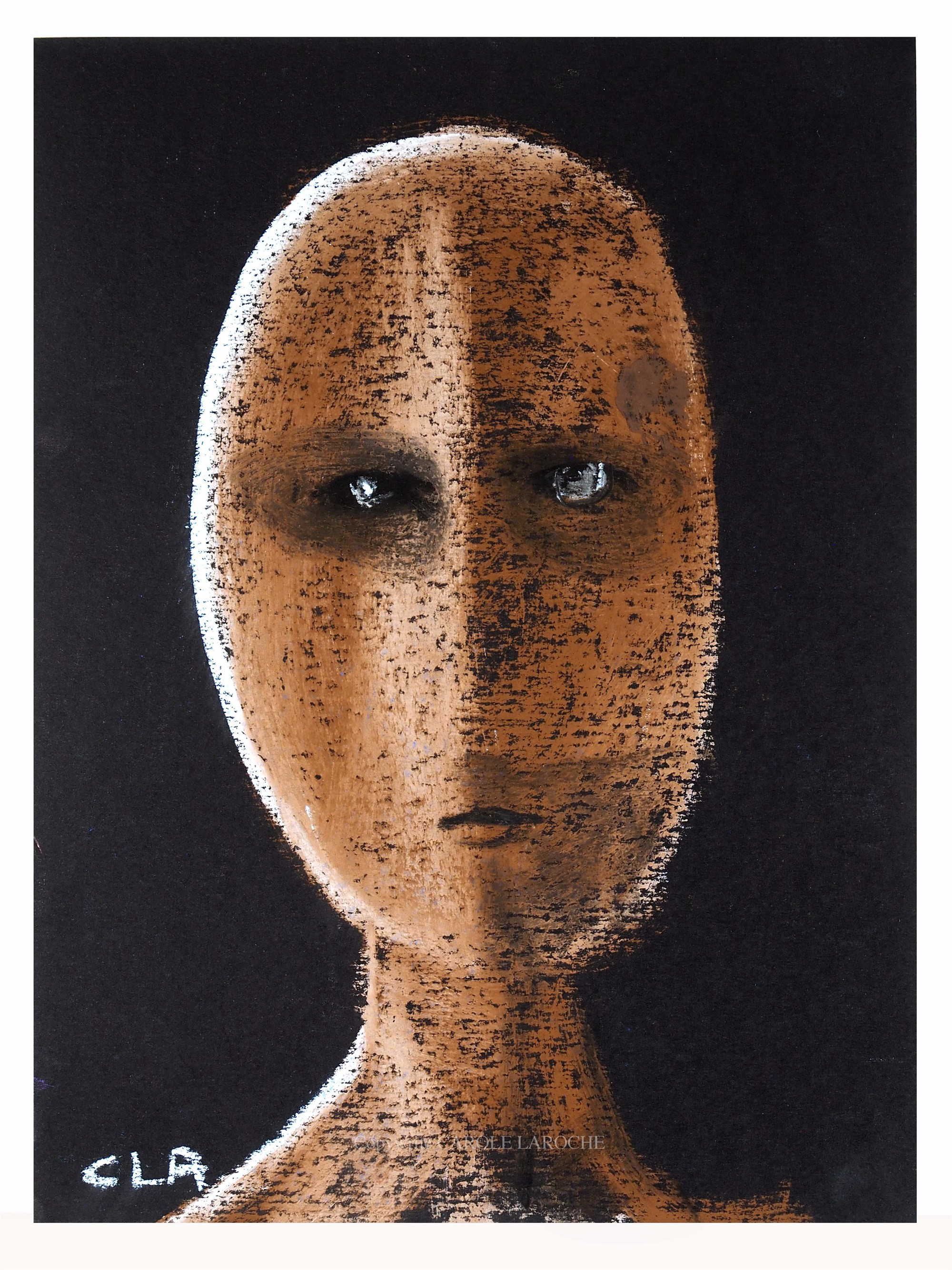 AMBER MESSENGER by Carole LaRoche