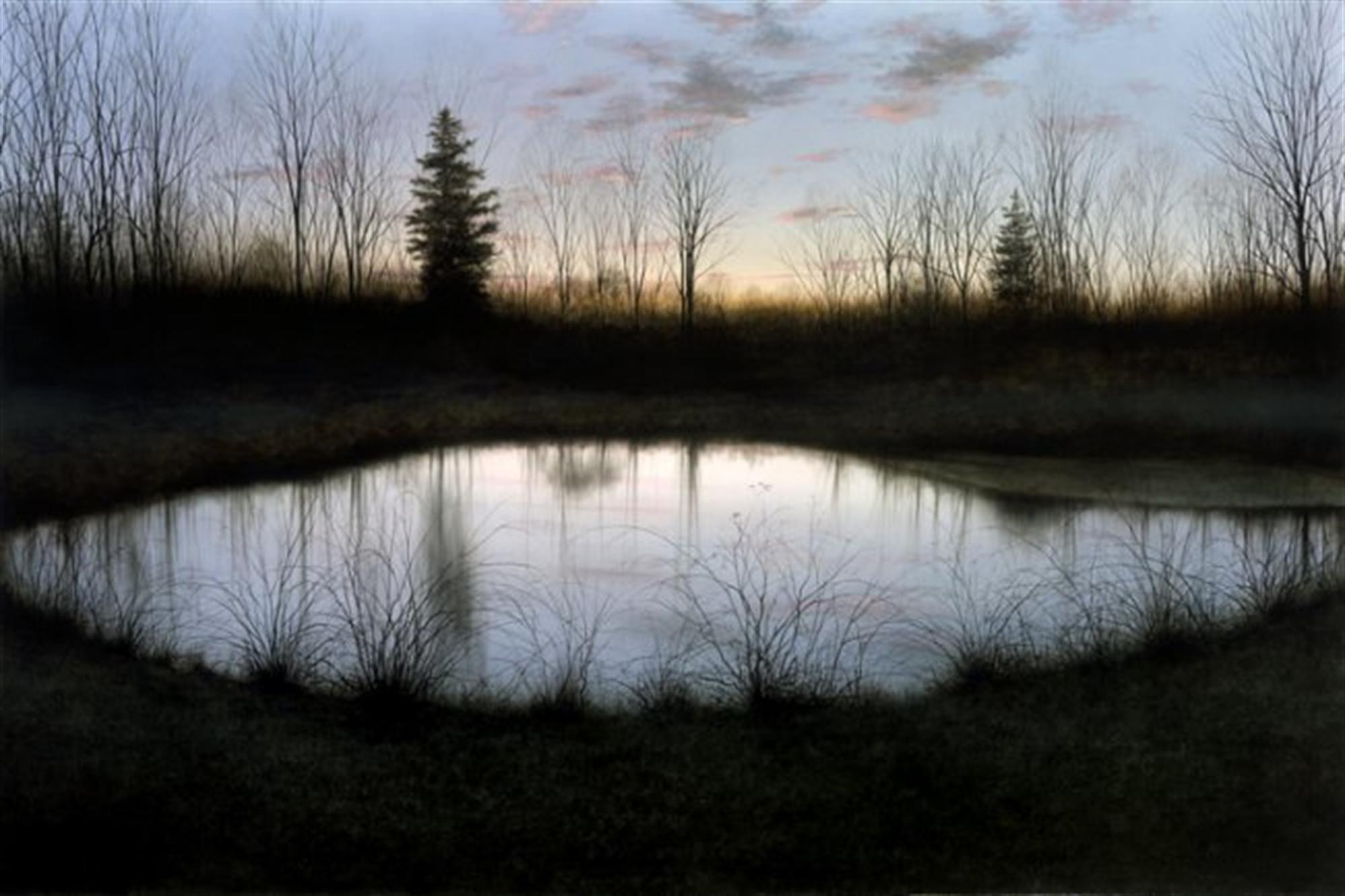 Night Pond by Alexander Volkov