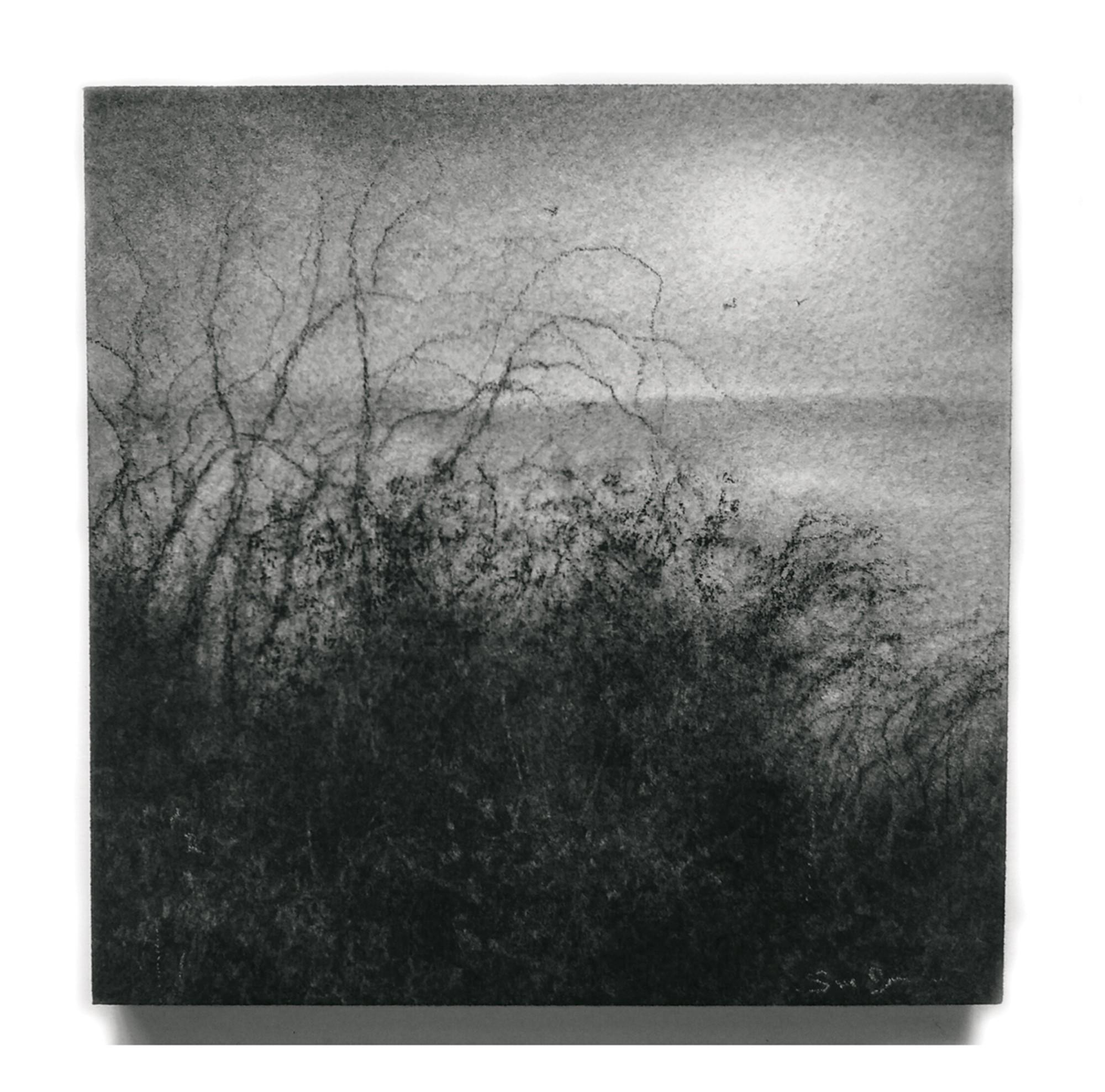 Edgeland XXXIV by Sue Bryan