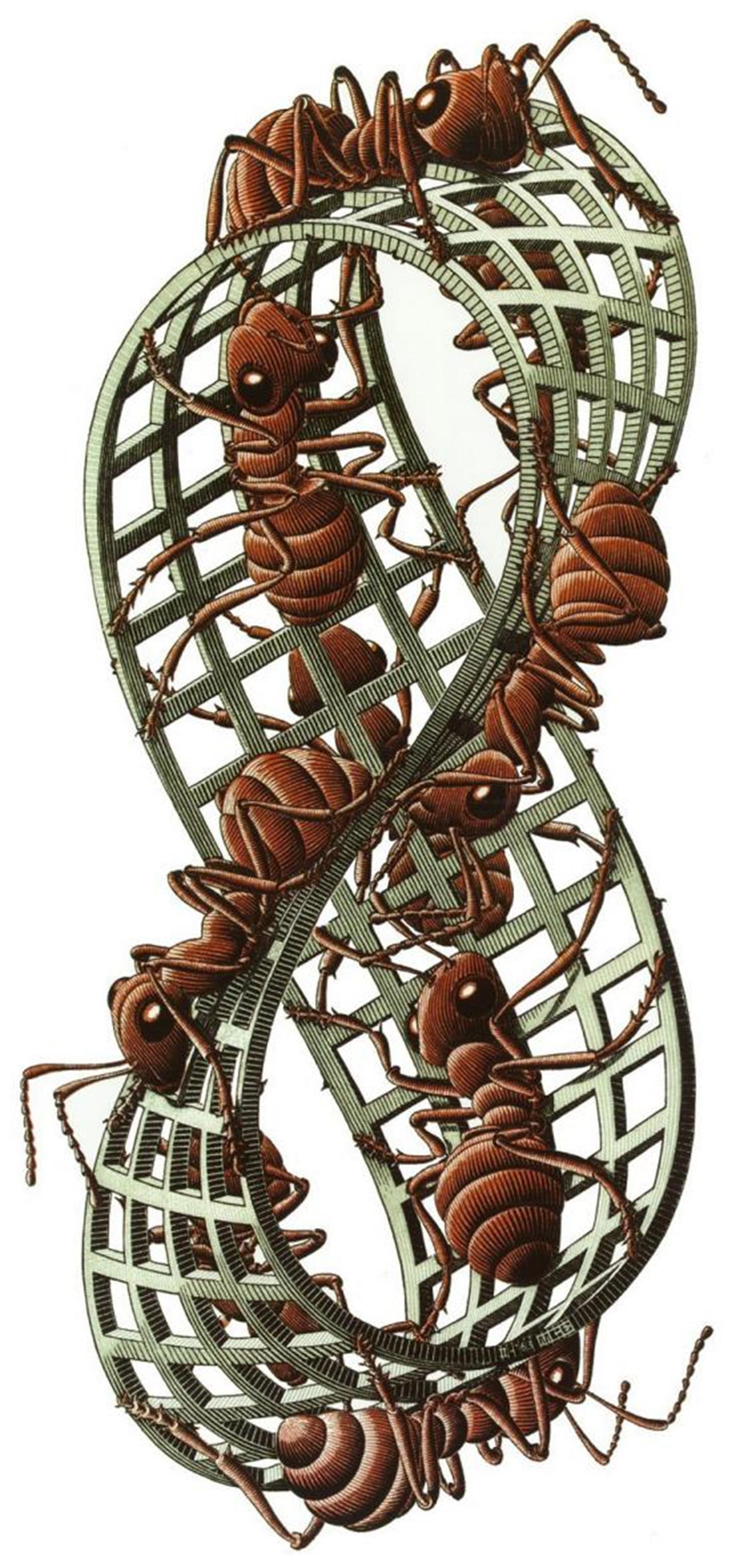 Mobius Strip II (Red Ants) by M.C. Escher