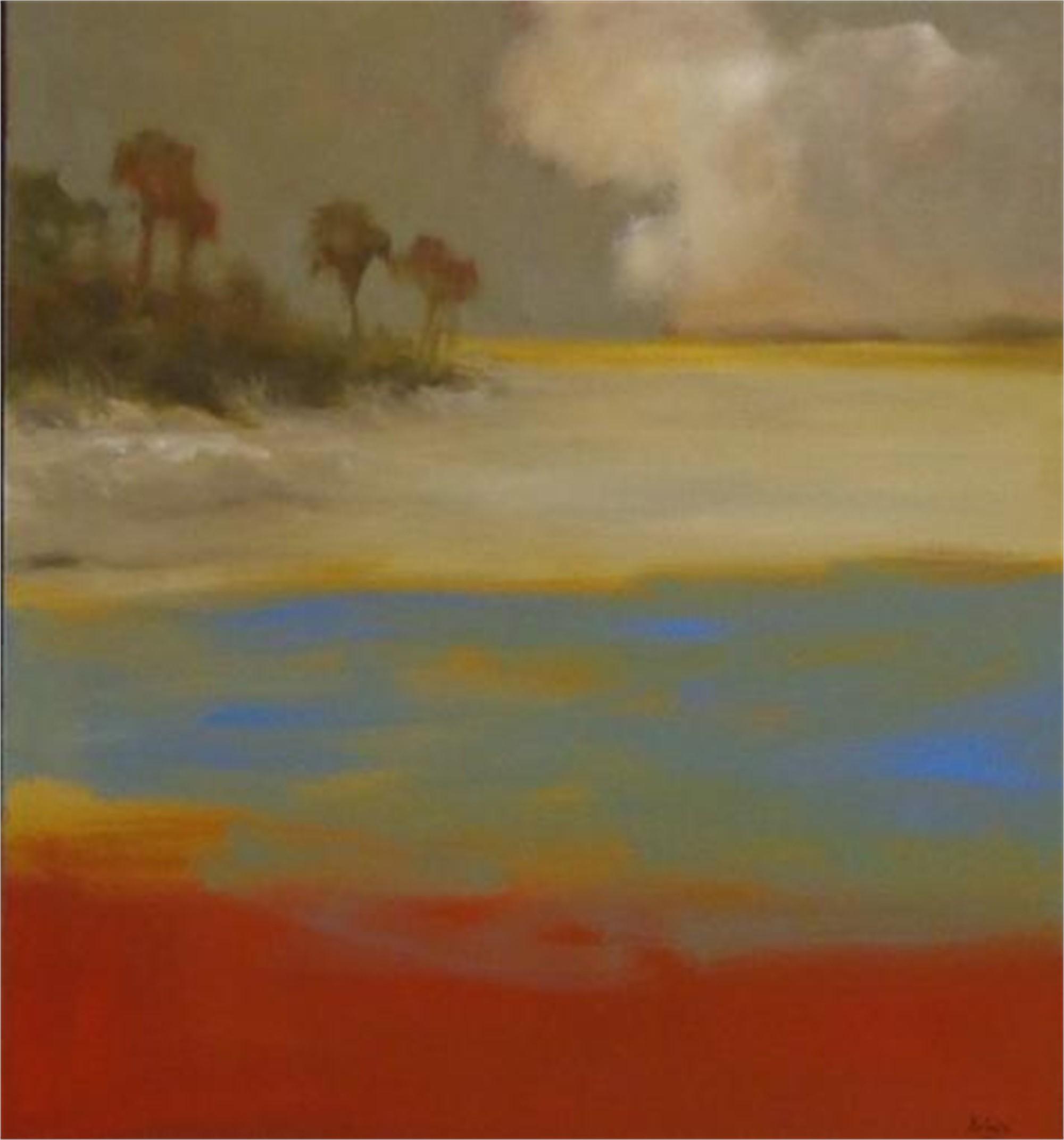 Barrier Island by Jim Darlington