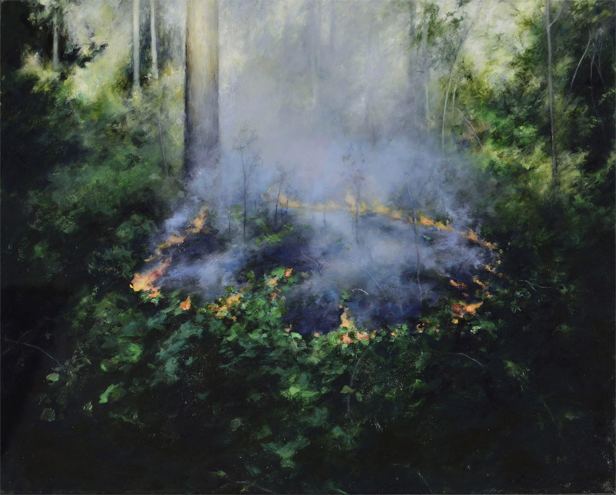 Controlled Burn 3 by Elsa Muñoz