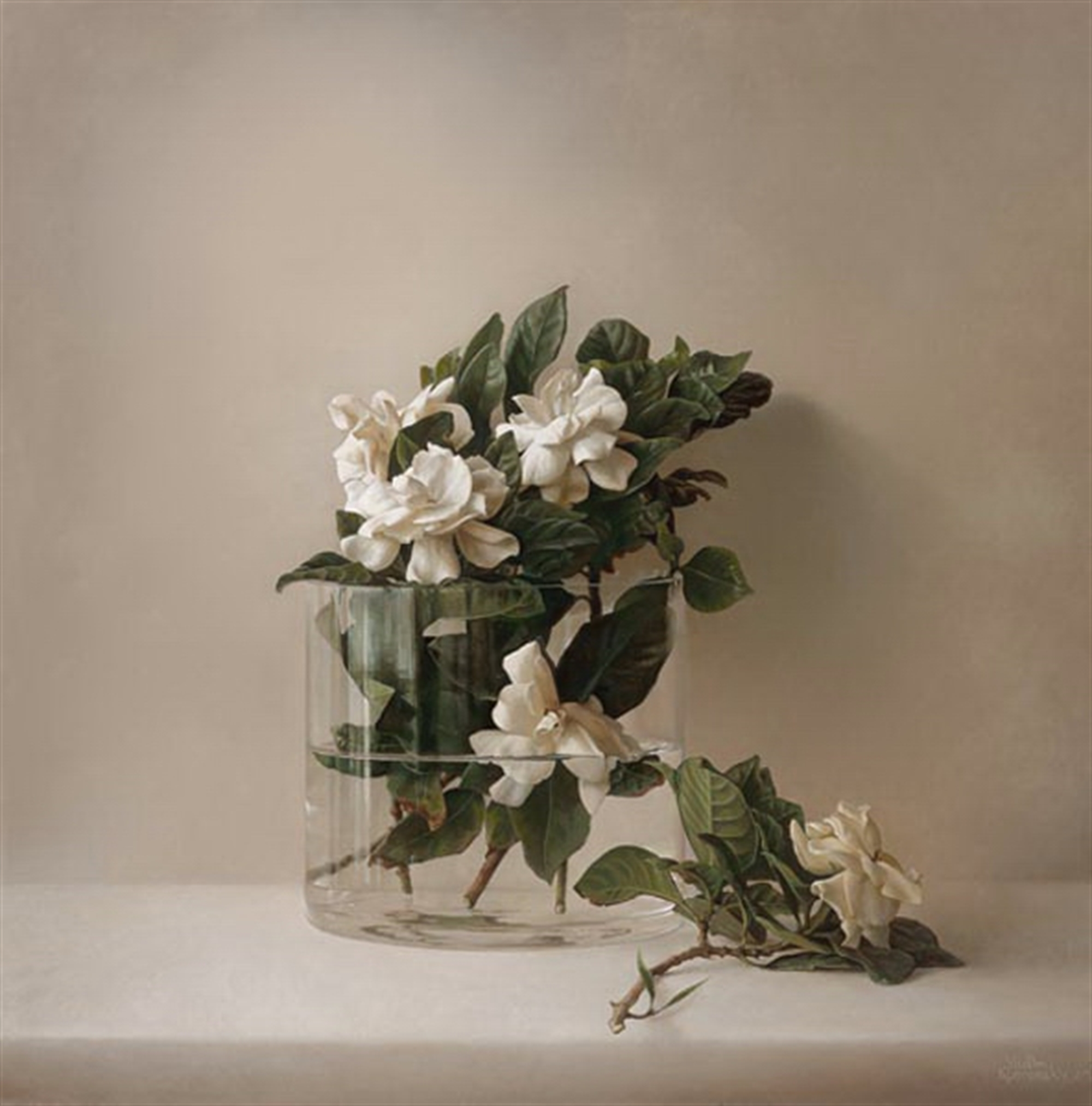 August Beauty by Vadim Klevenskiy