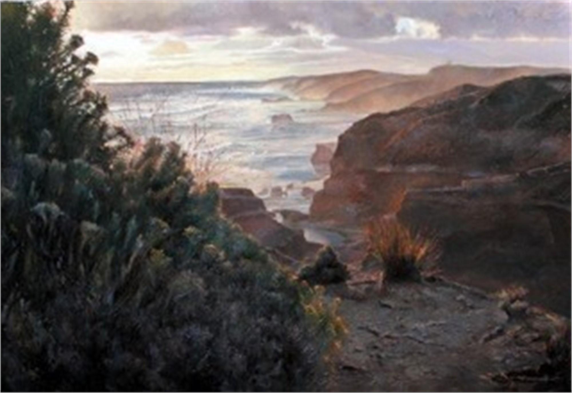 Sorrento Back Beach, Australia by Chris Hopkins