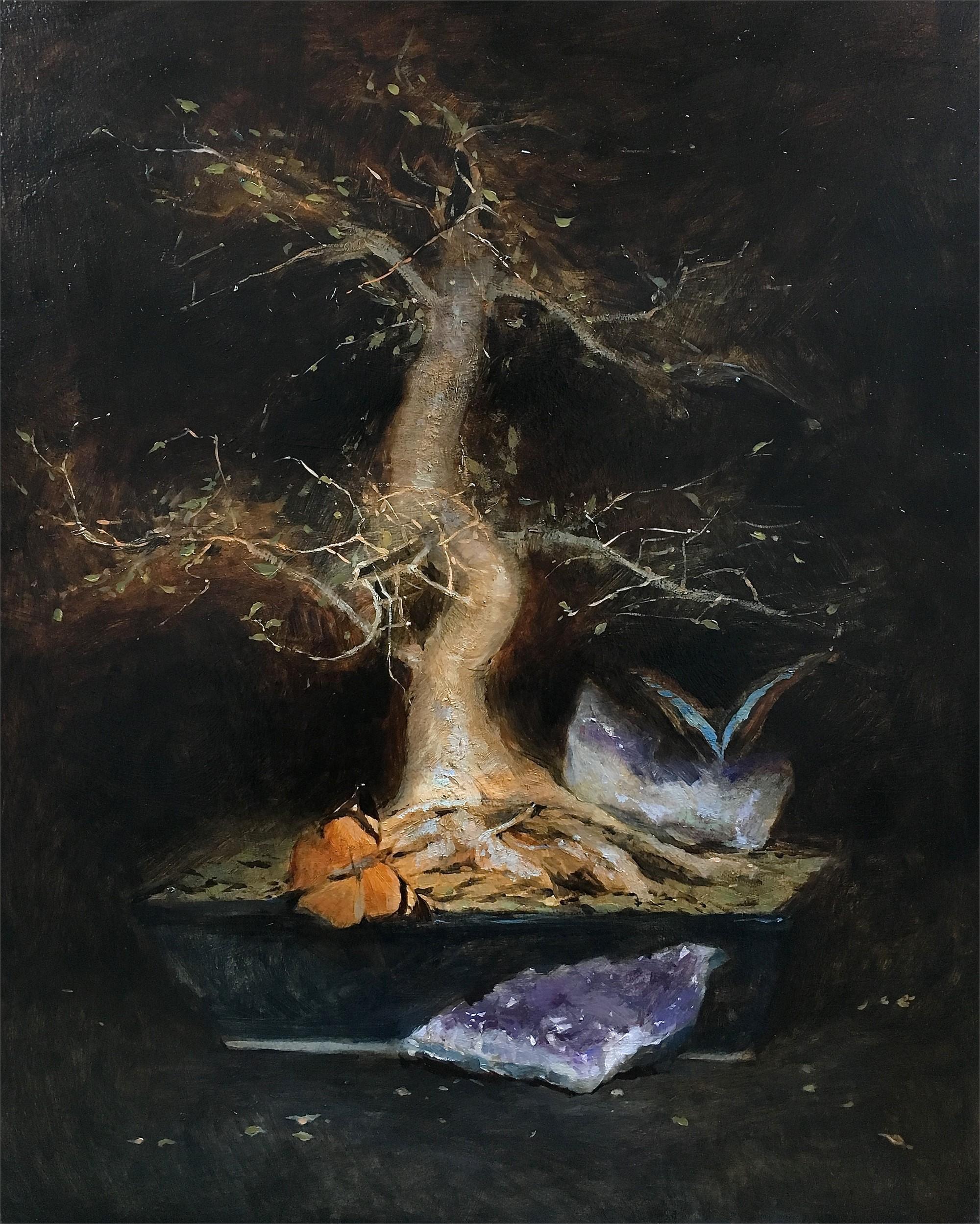 Natura Morta con il Bonsai by Tanvi Pathare