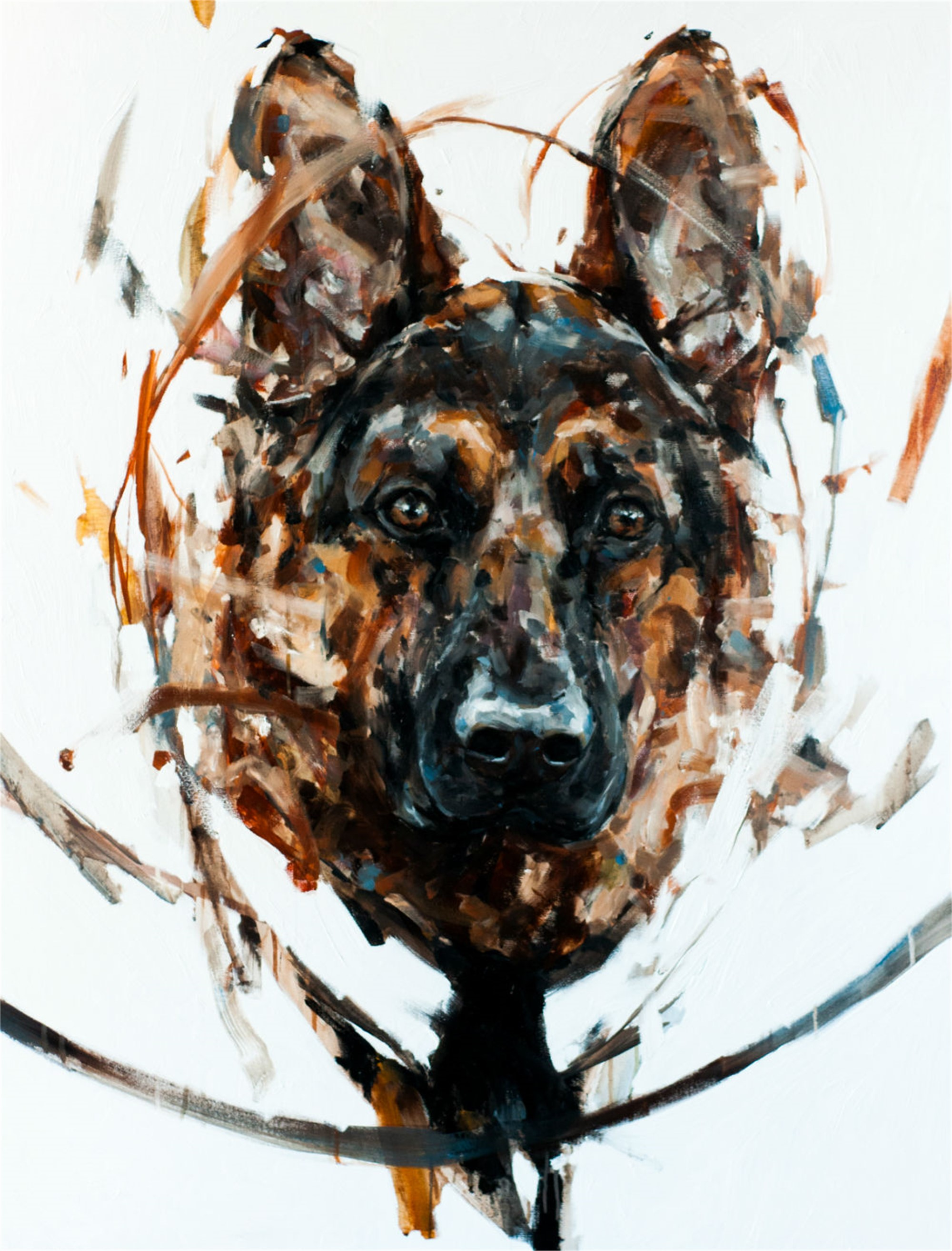 German Shepard 2 by Thibault Jandot