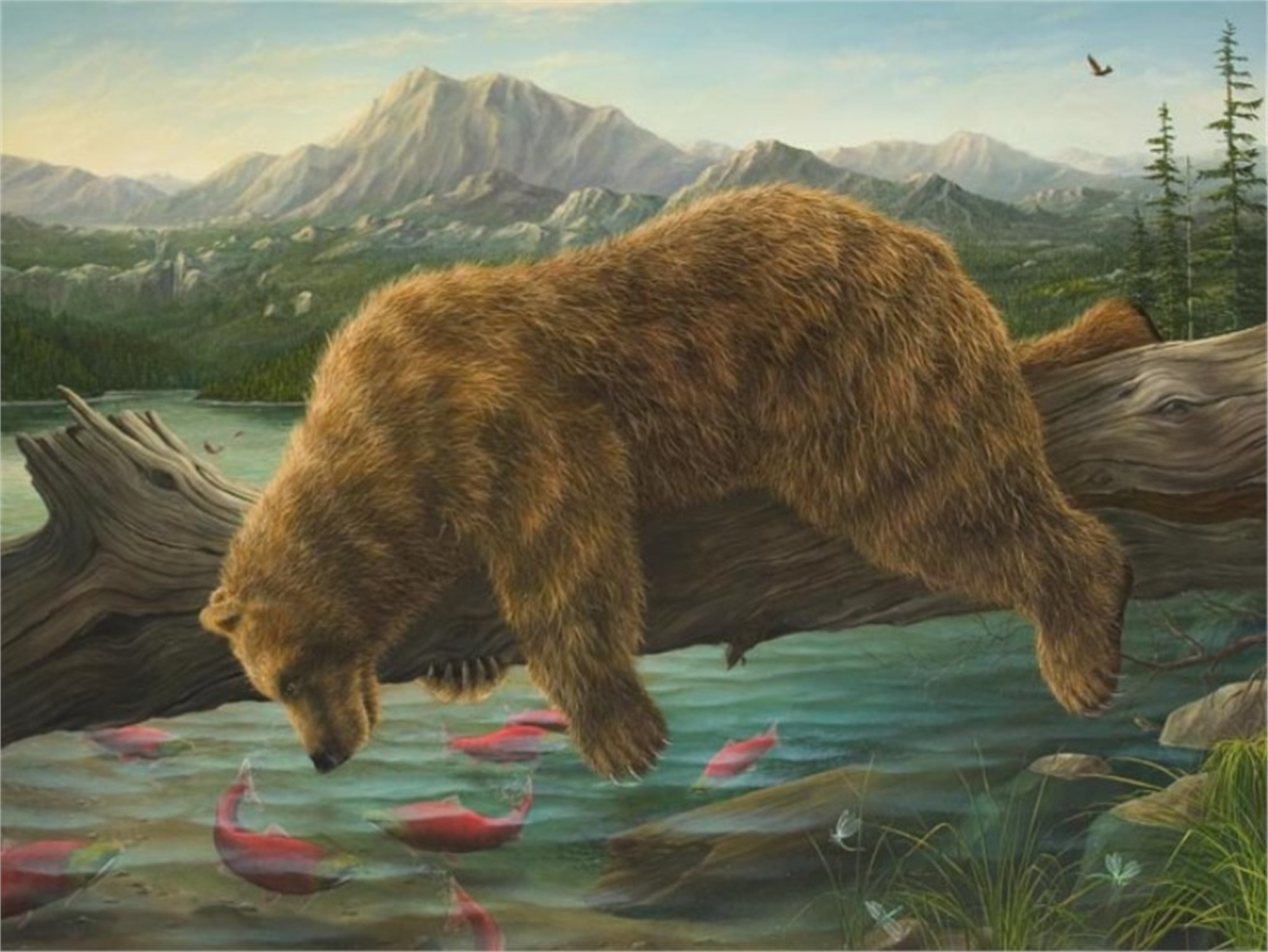 The Reflection (AP) by Robert Bissell