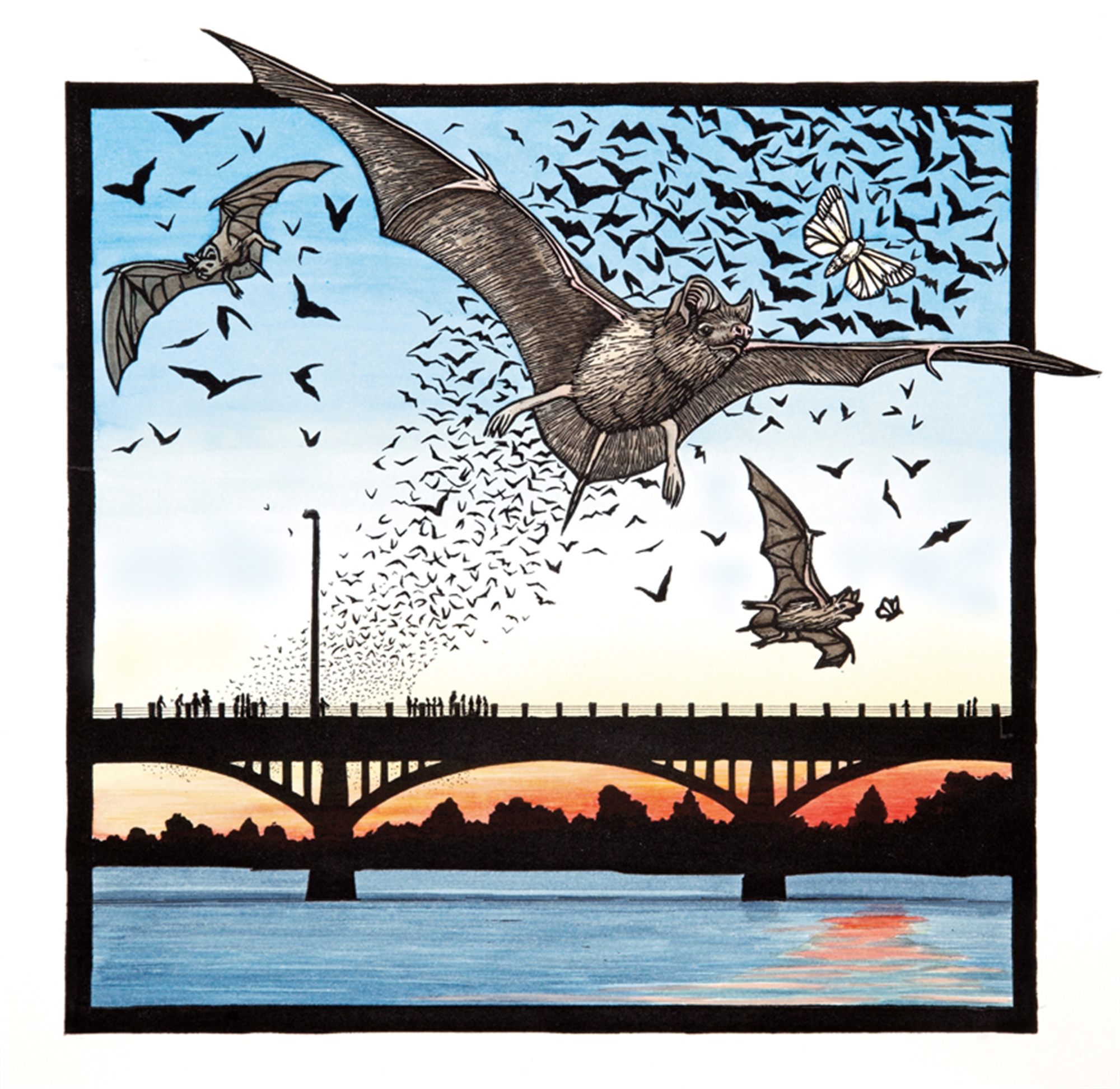 Bats & Congress Avenue Bridge by Margie Crisp