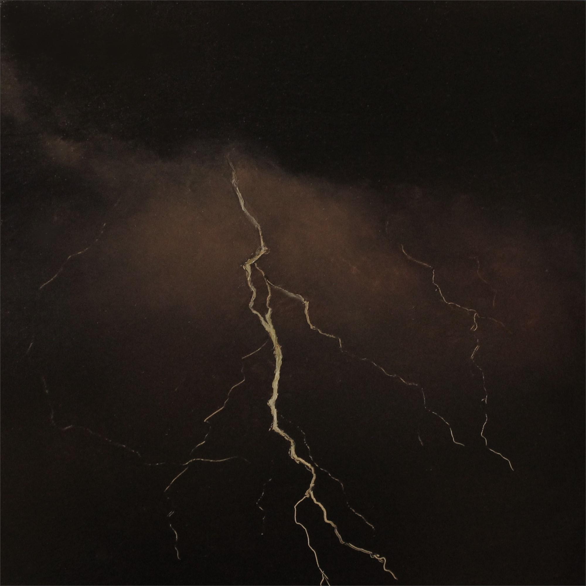 Lightning by Elsa Muñoz
