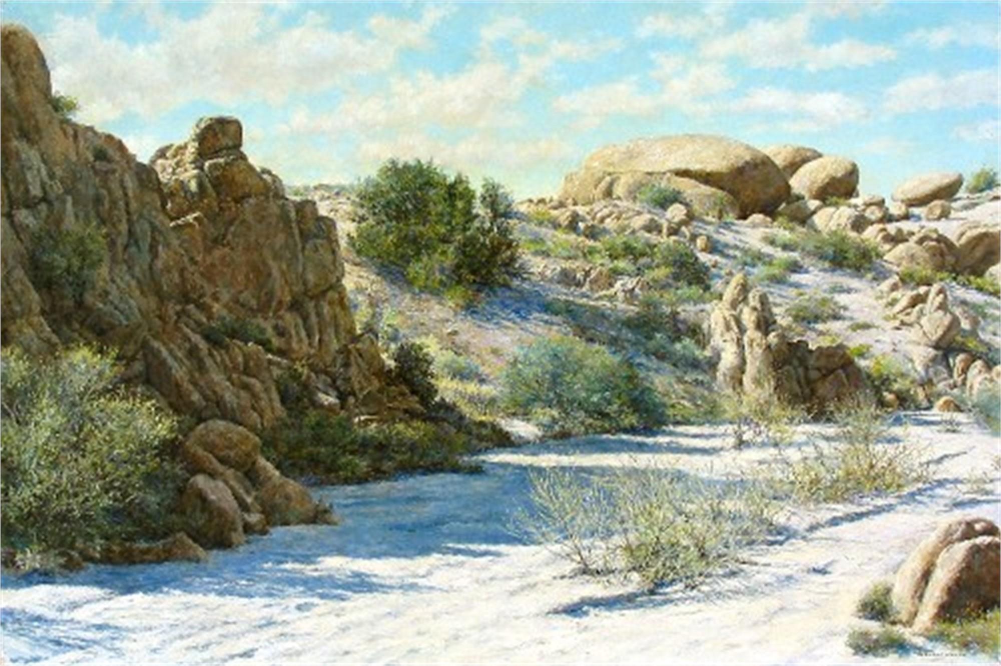 DESERT SCENE by WYNNE