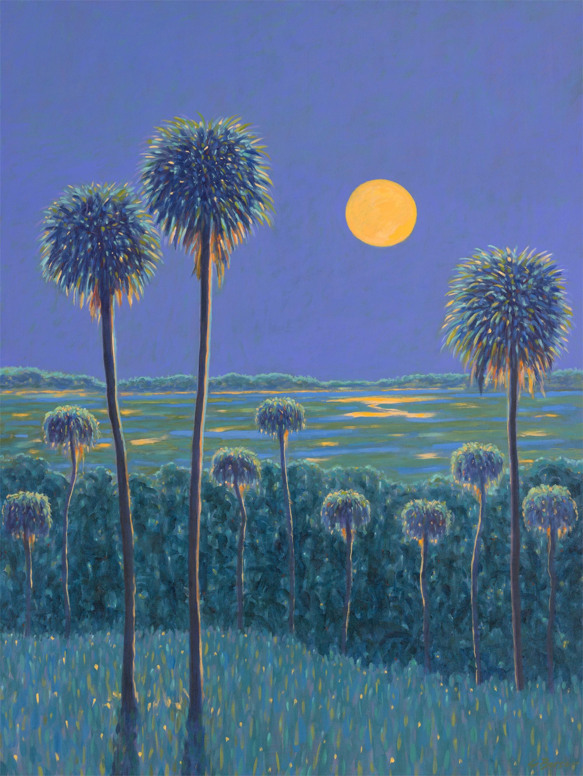 Mystic Moon by Gary Borse