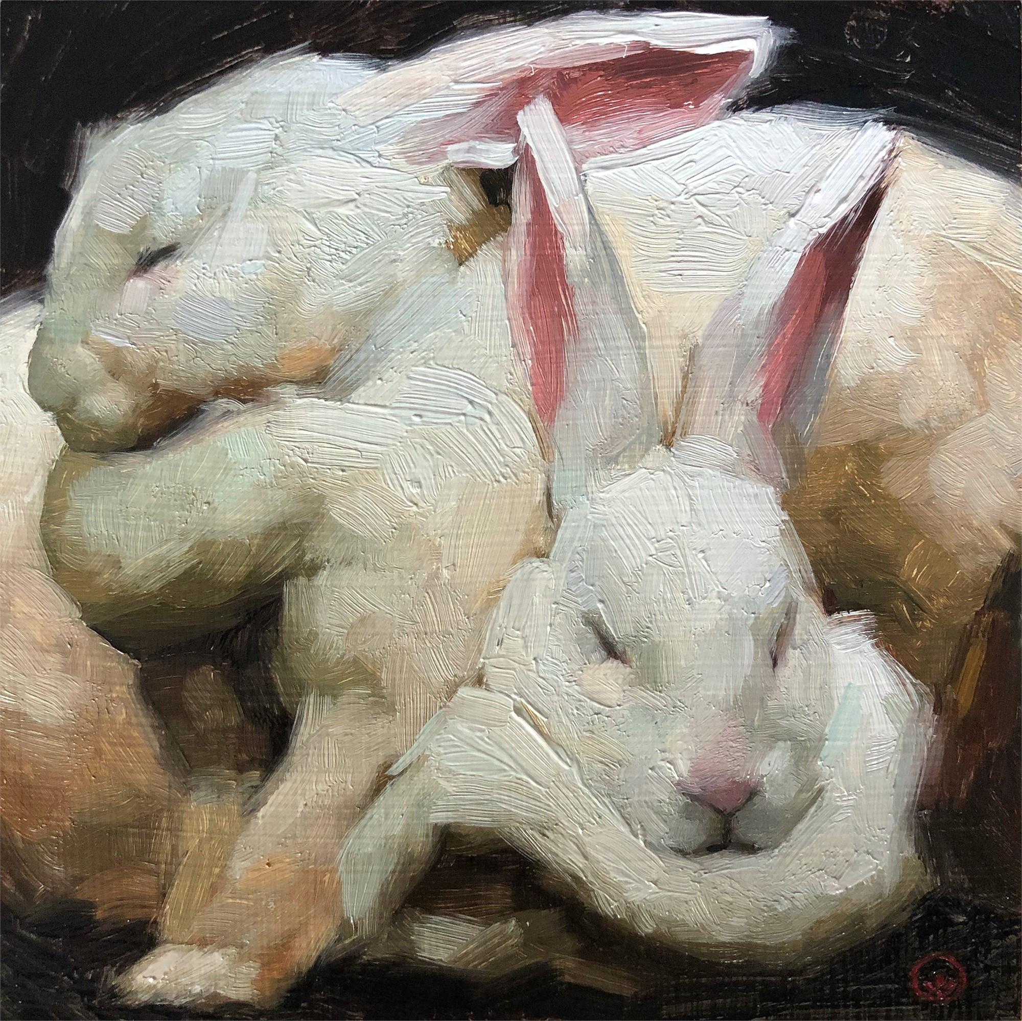 Bunny Cuddles by Jennifer Gennari