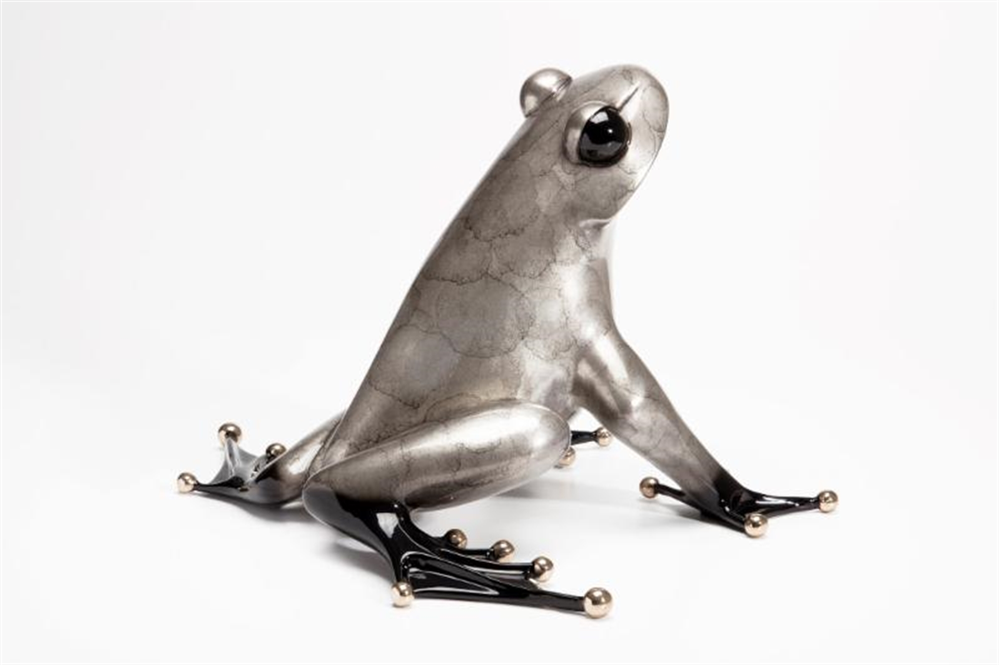 Ferguson Silver Patina by The Frogman