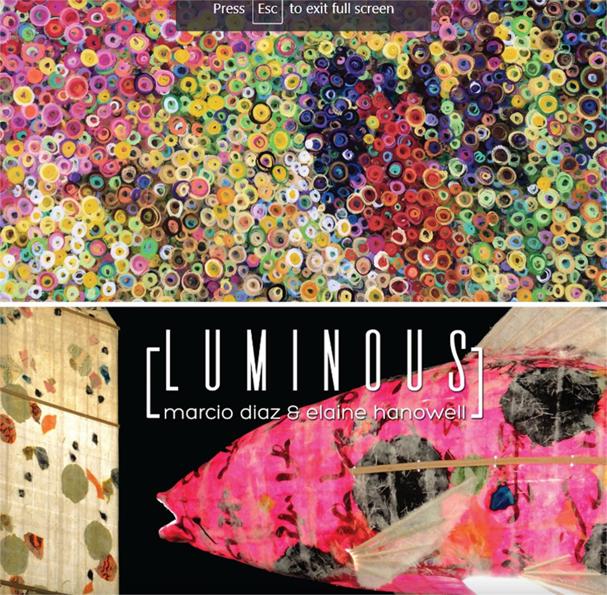 Luminous: Marcio Diaz and Elaine Hanowell | exhibition catalog by ArtXchange Gallery