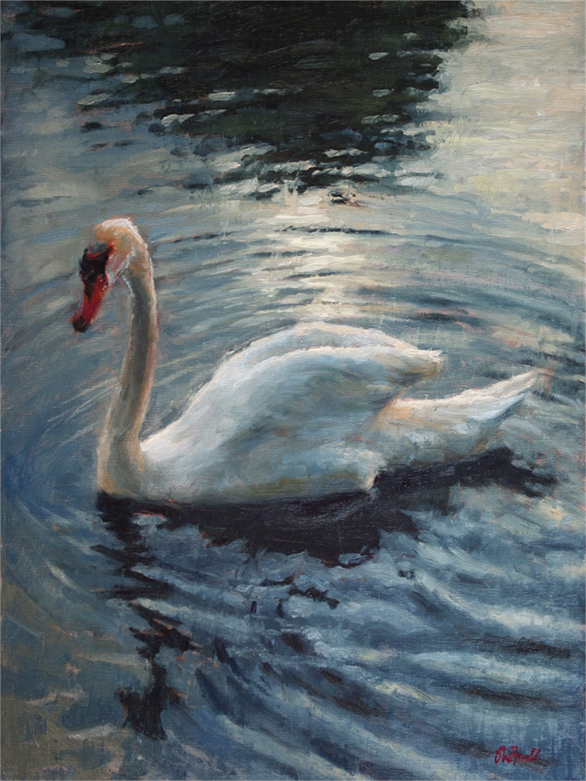 Swan Lake by Sue Foell, OPA