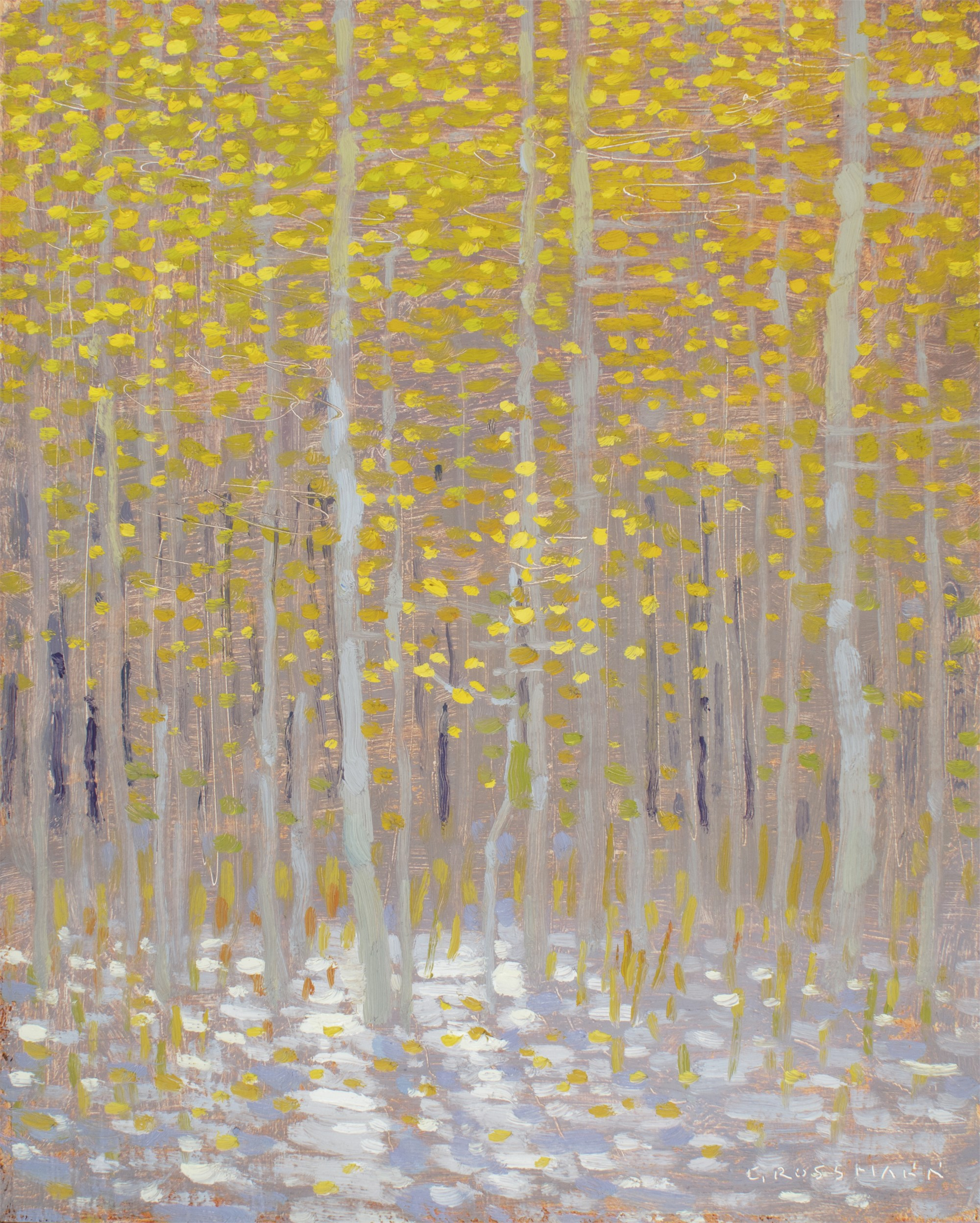 Snow and Sunlit Leaves by David Grossmann