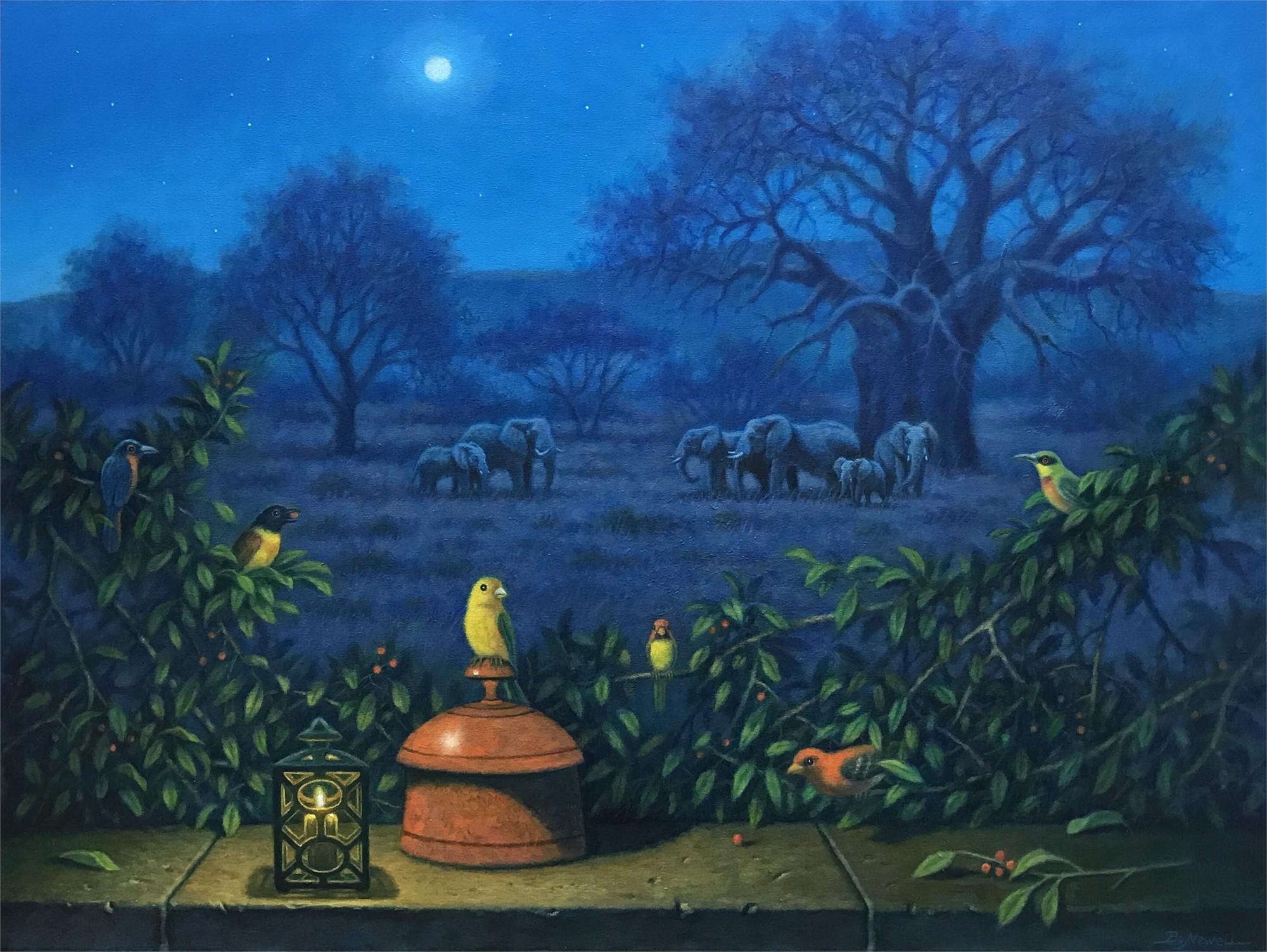 Moonlight by Bo Newell