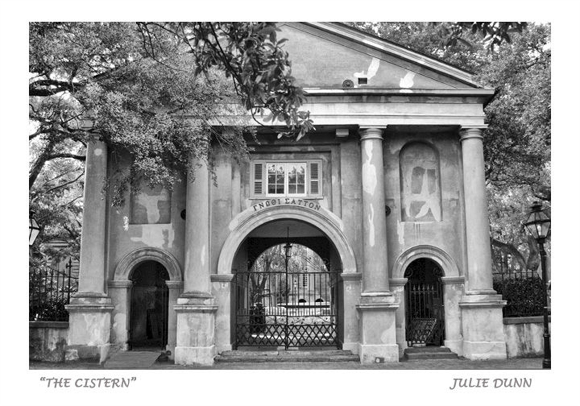 The Cistern by Julie Dunn