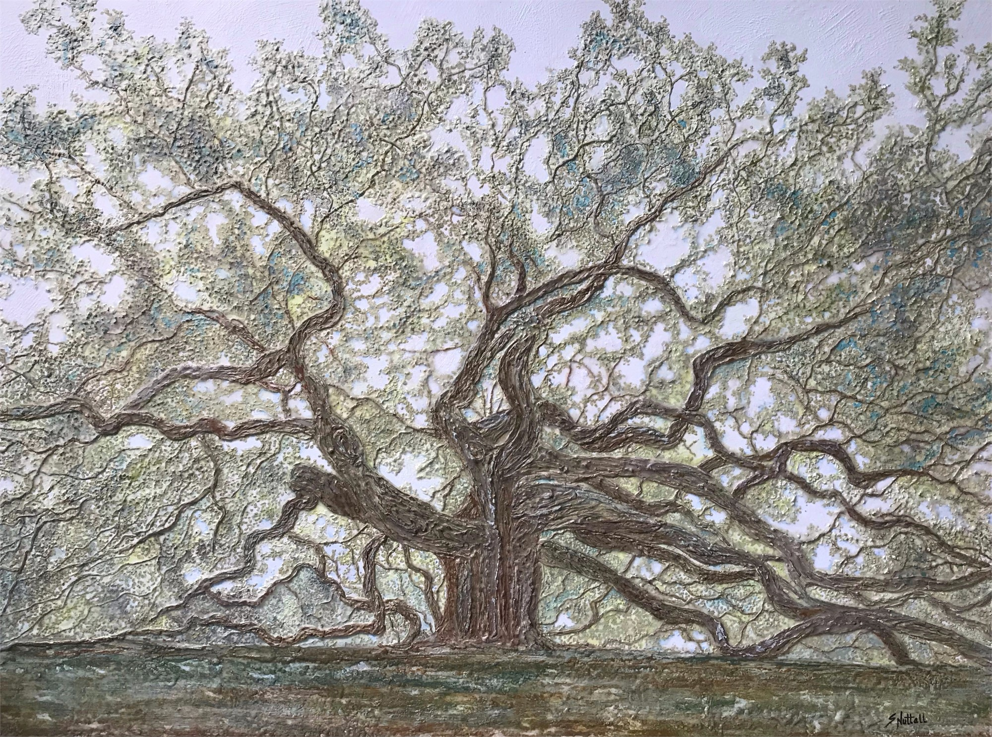 Angel Oak - Misty Morning by Susan Nuttall