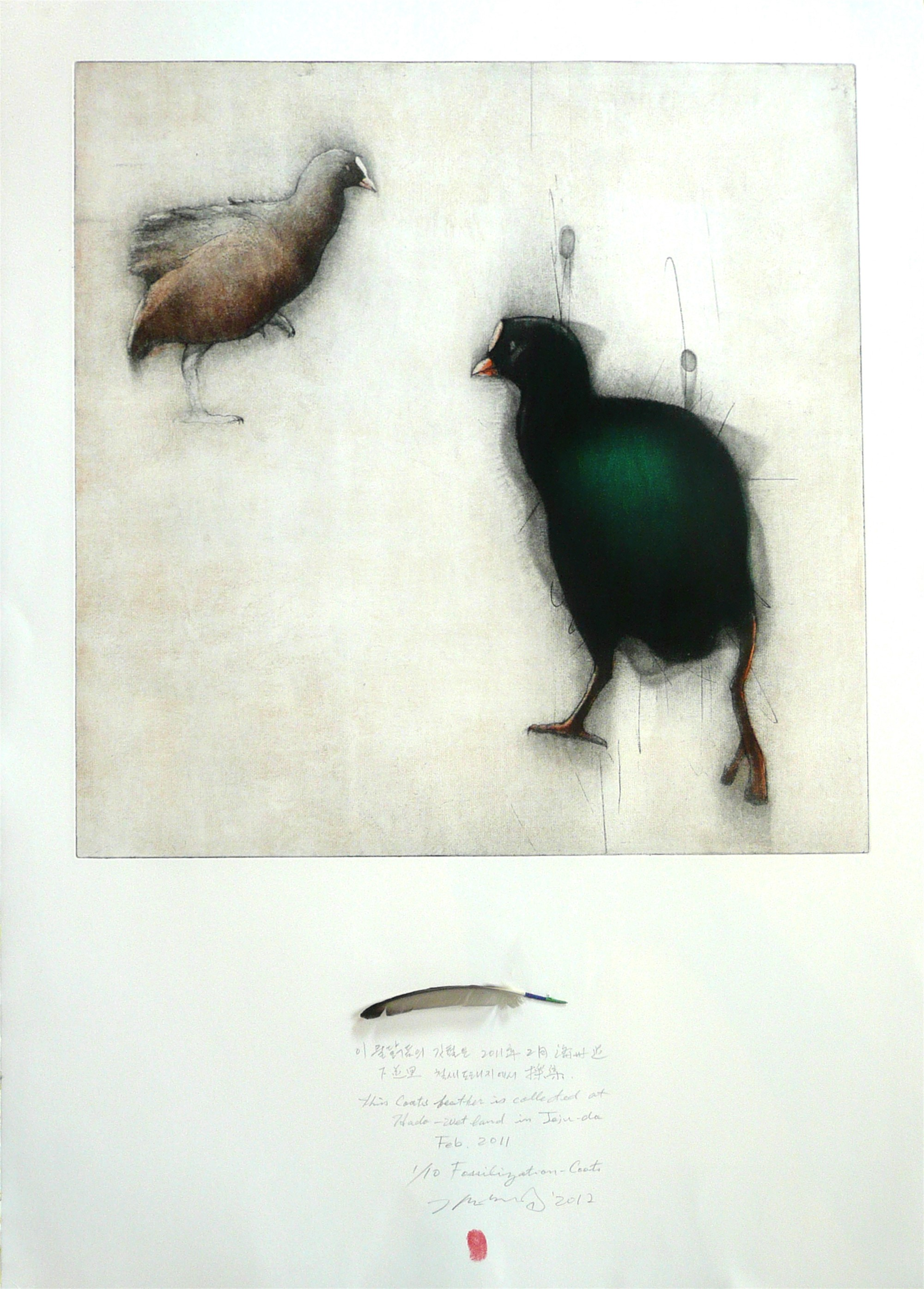 Fossilization: Coots (Artist's Proof) by Gilchun Koh