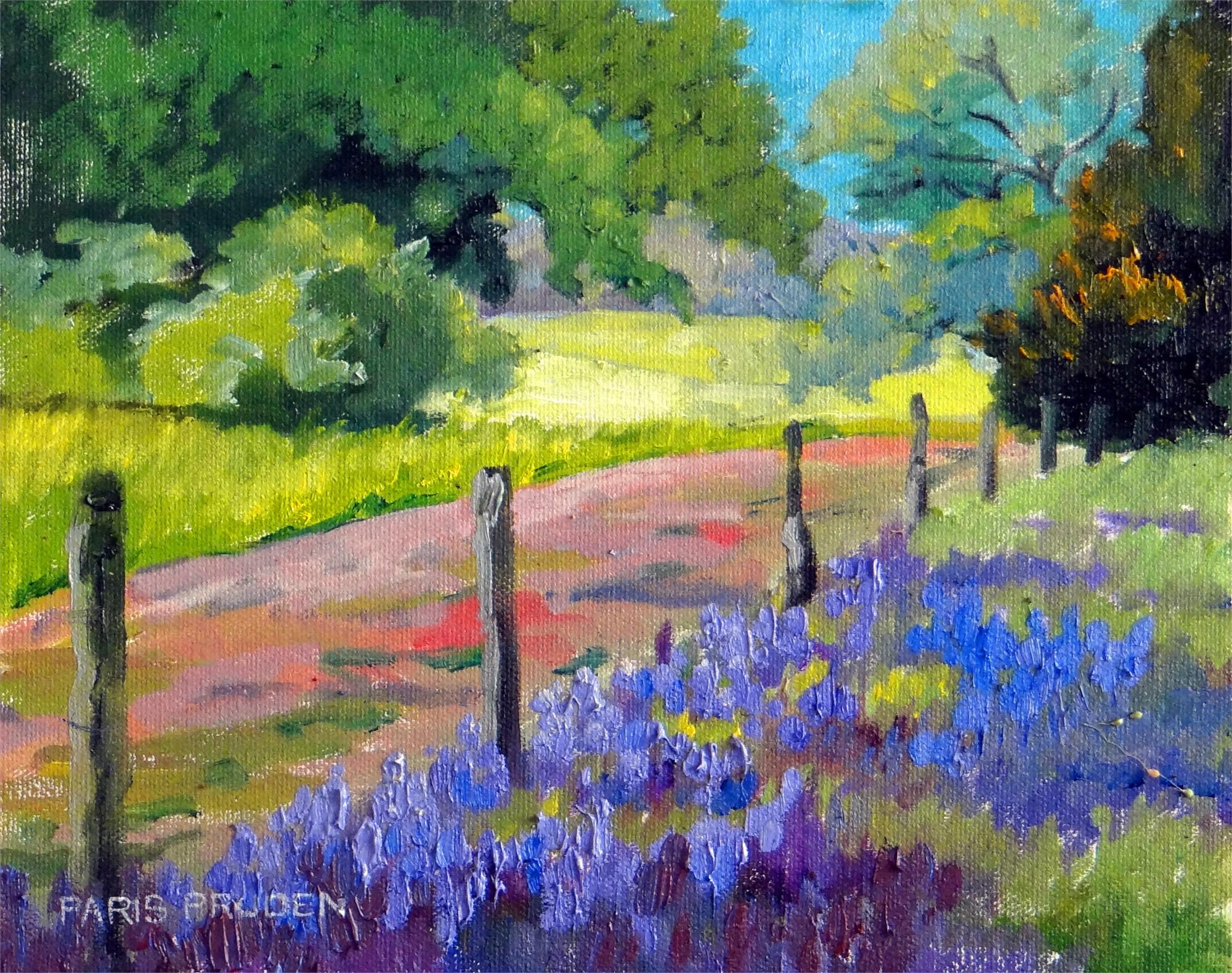 Field Across the Fence by Nancy Paris Pruden