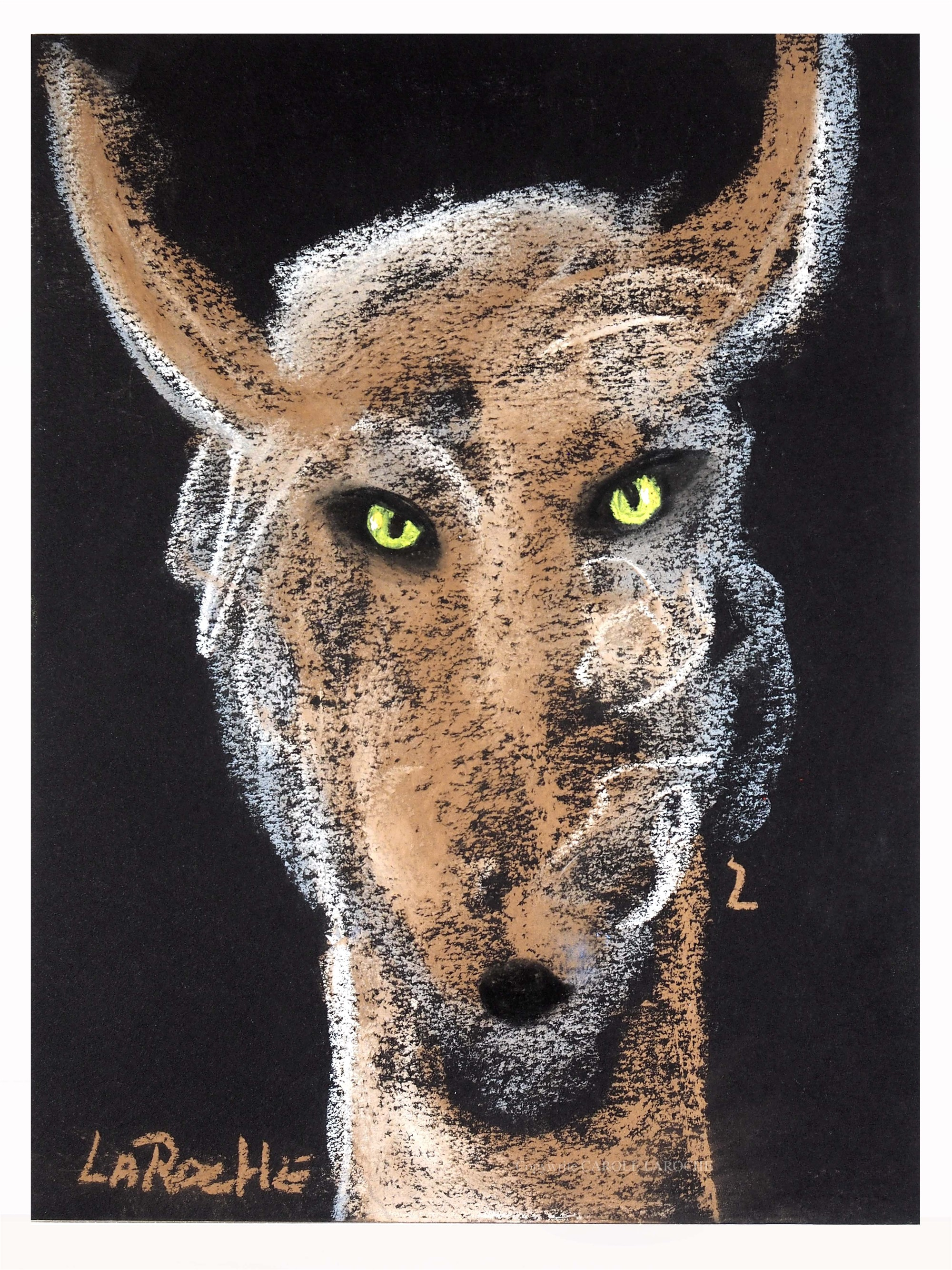 DEER MESSENGER by Carole LaRoche