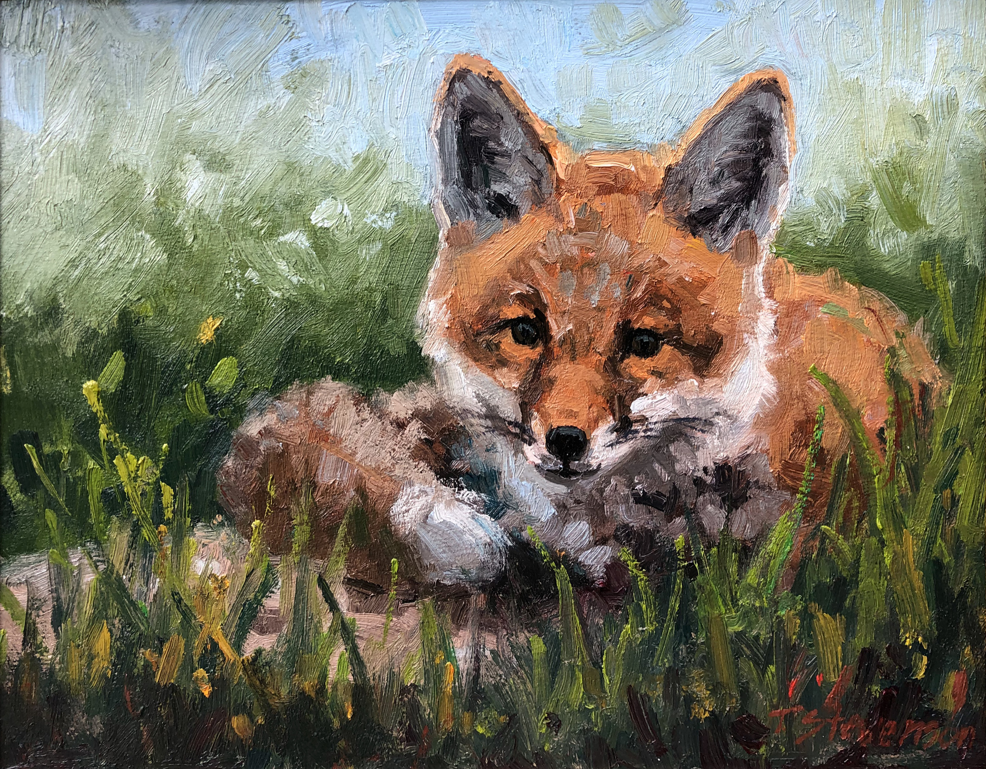 June Fox by Tiffany Stevenson