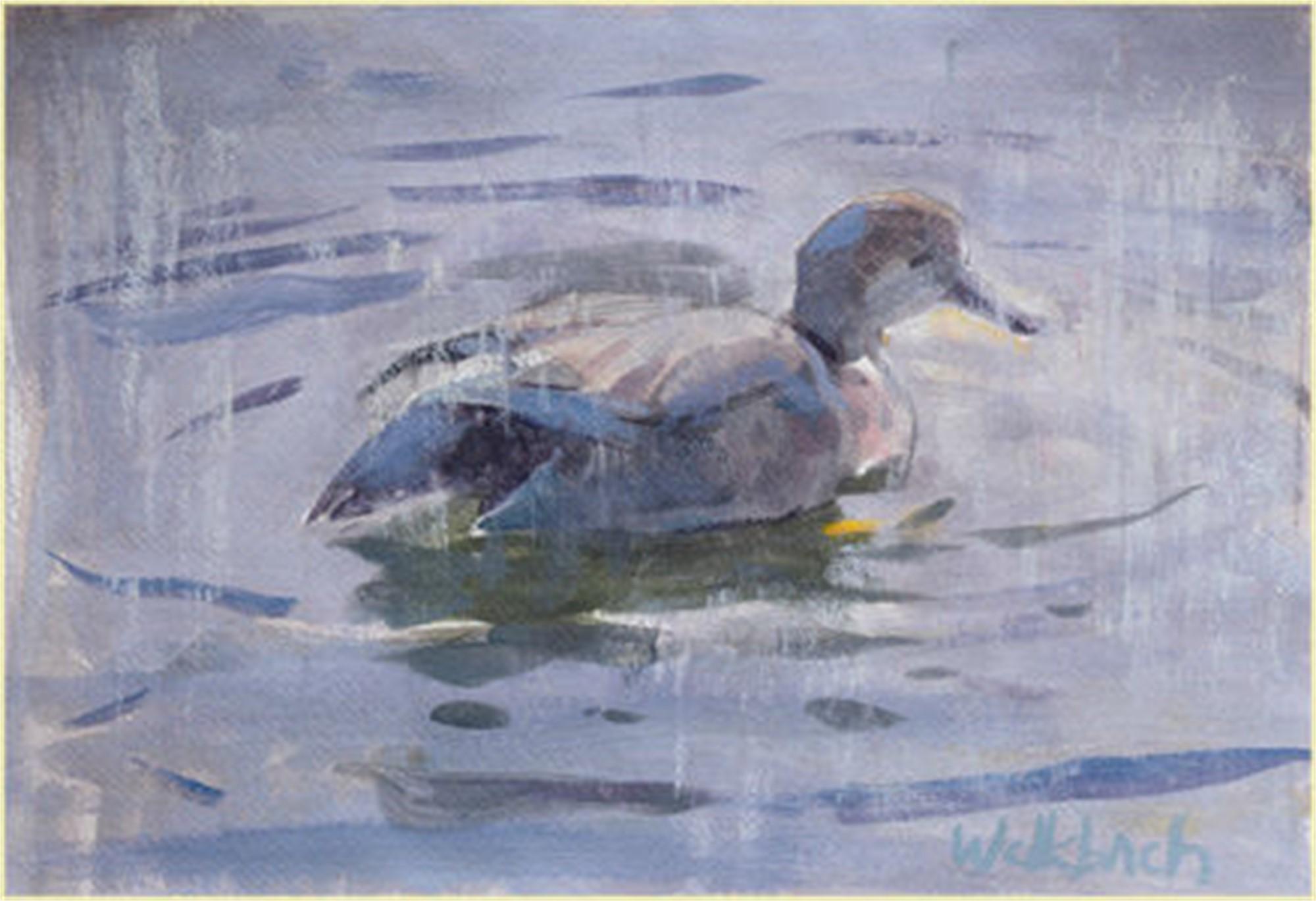 Duck by Kevin Weckbach