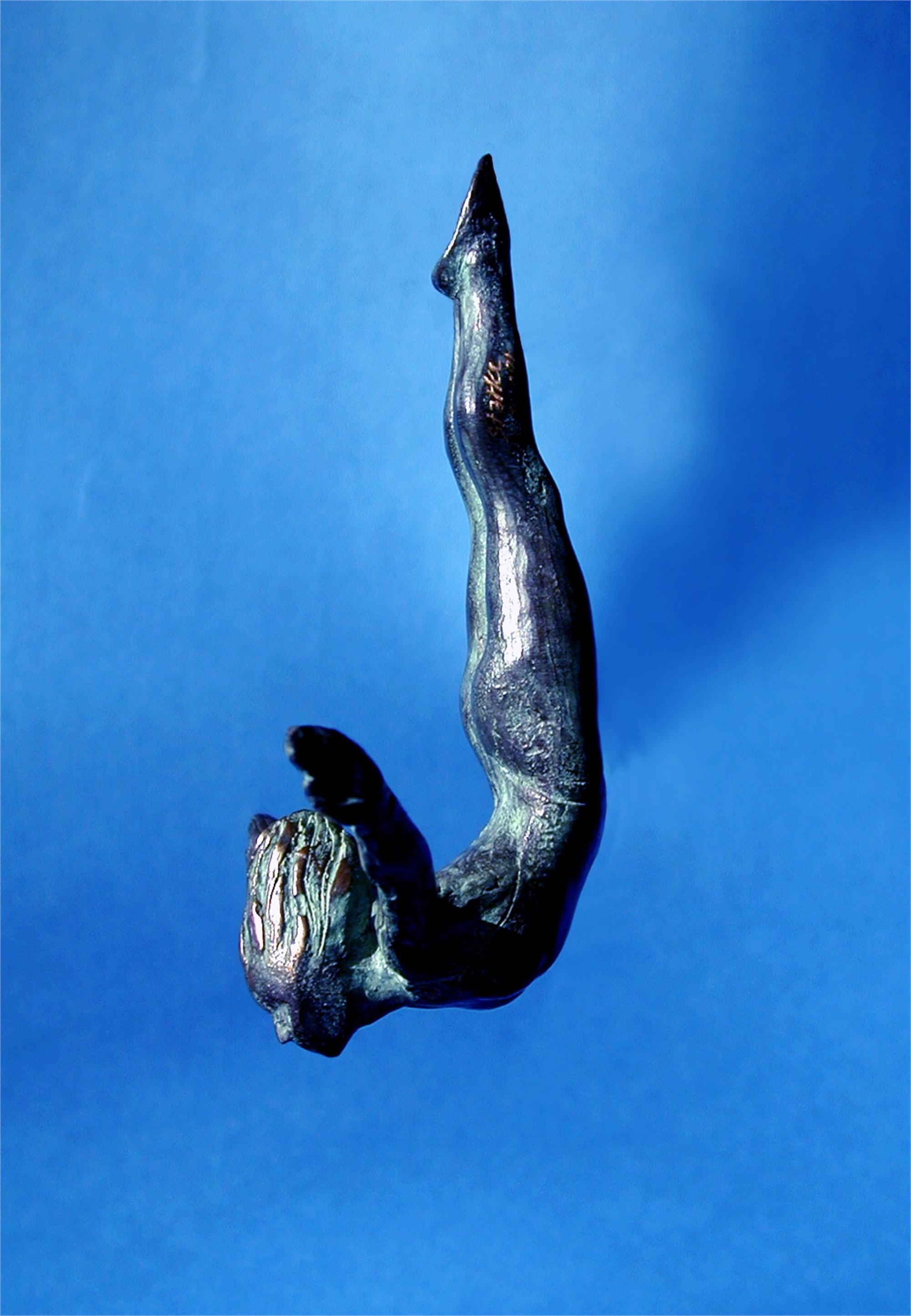 Female Skydiver by Bill Starke