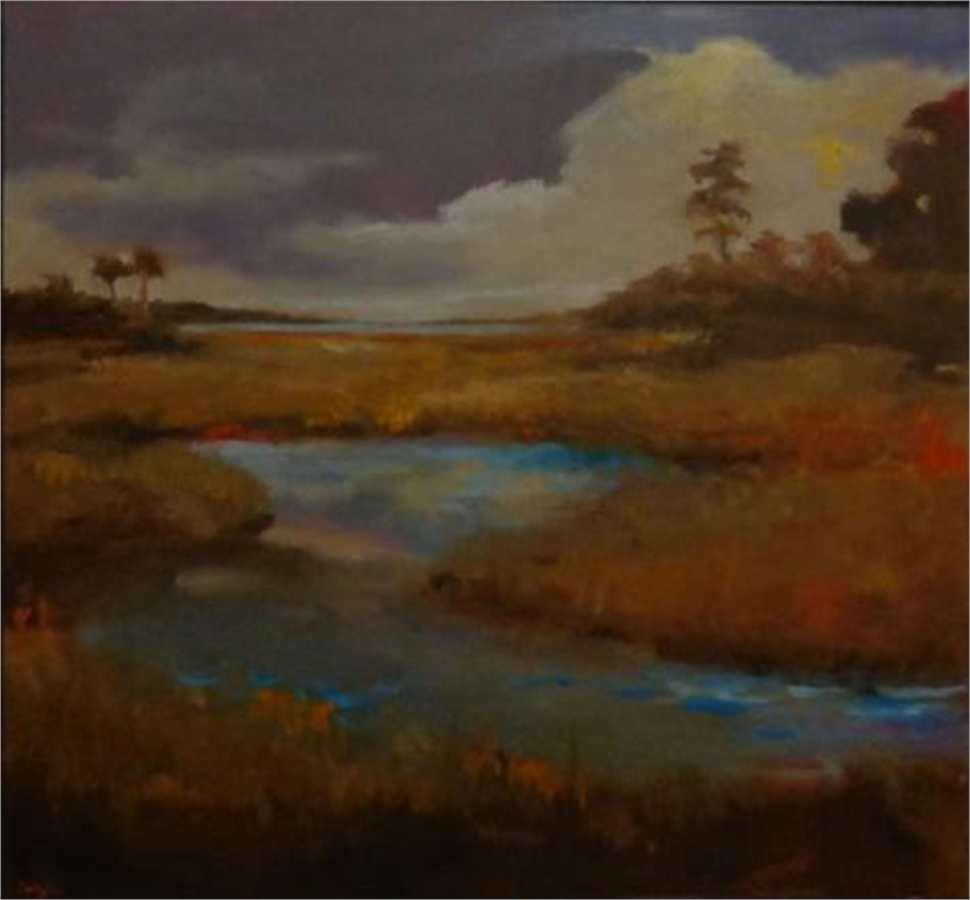 Autumn Marsh by Jim Darlington