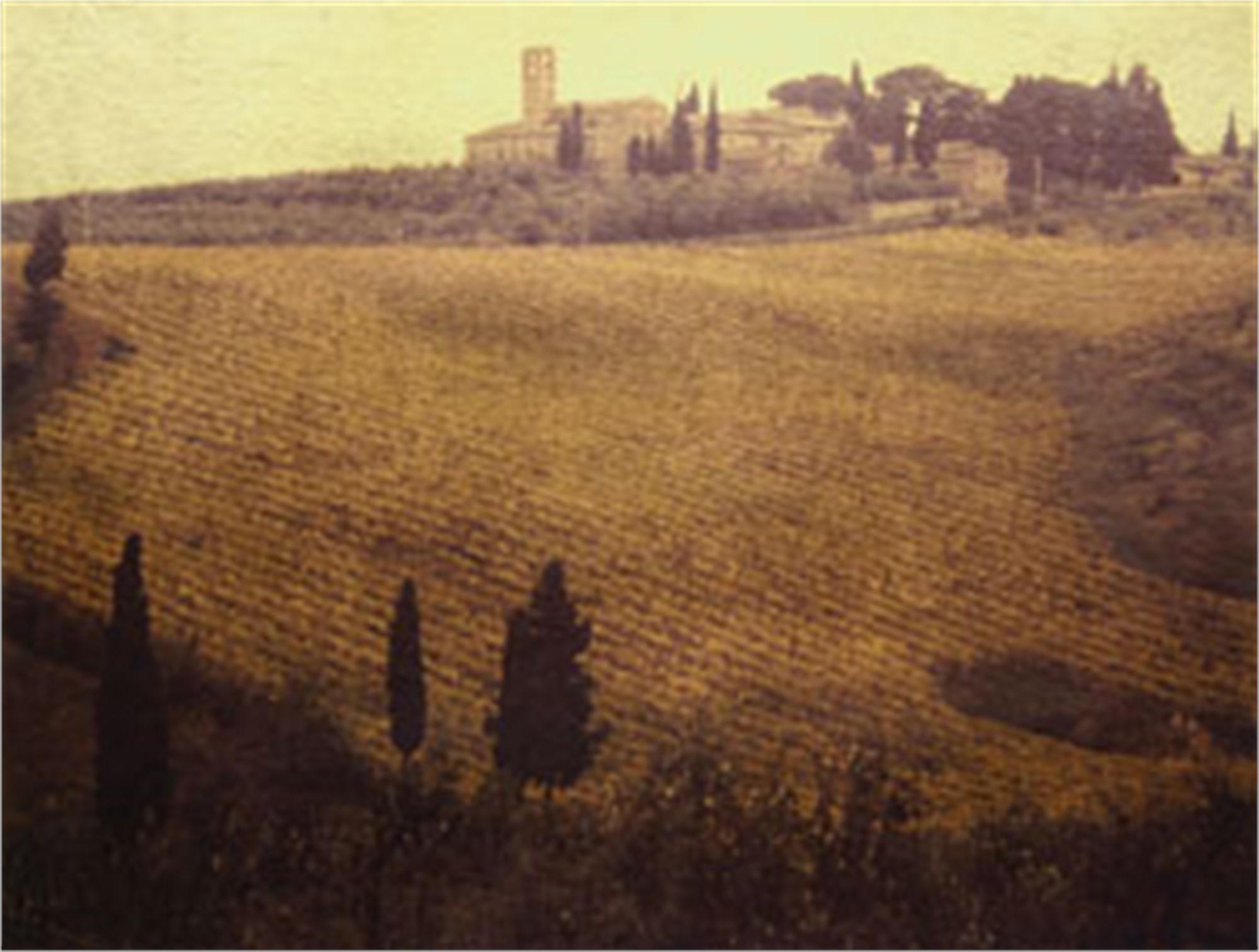 Tuscany by Patty Mulligan