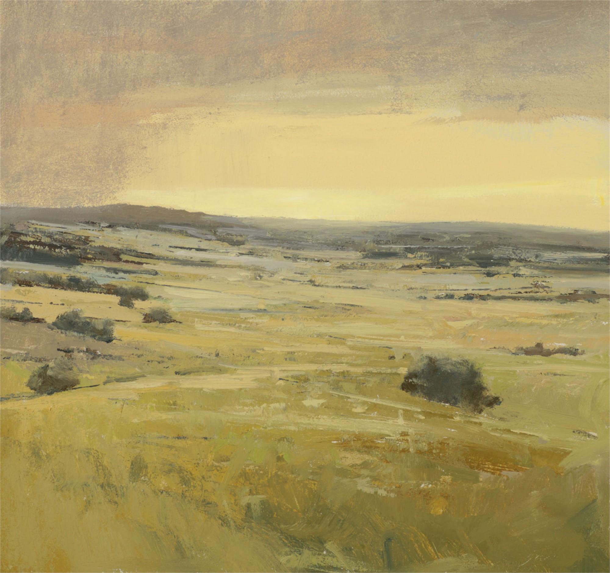 Distant Storm by Andrzej Skorut