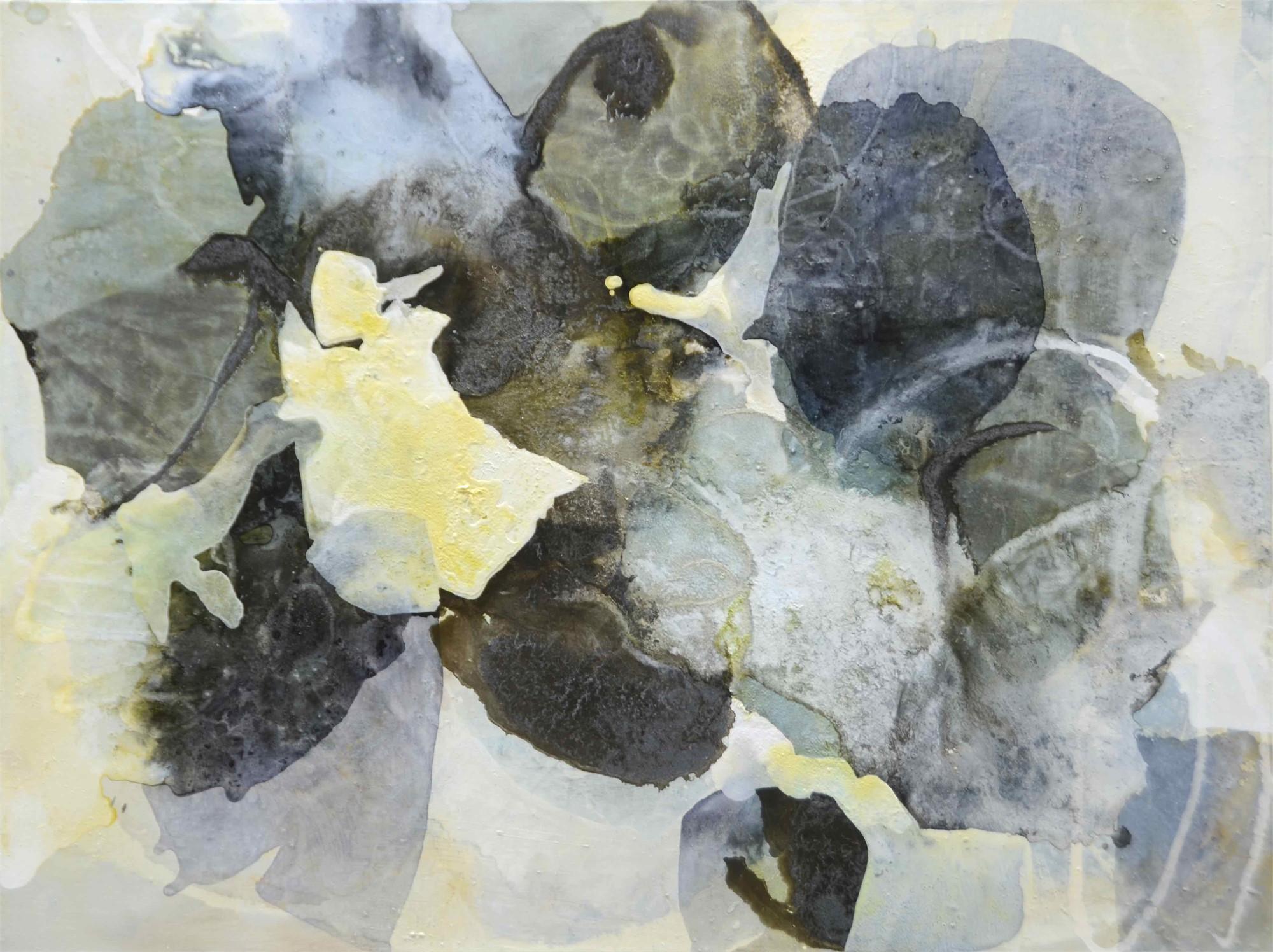 Shade 2 by Liz Barber