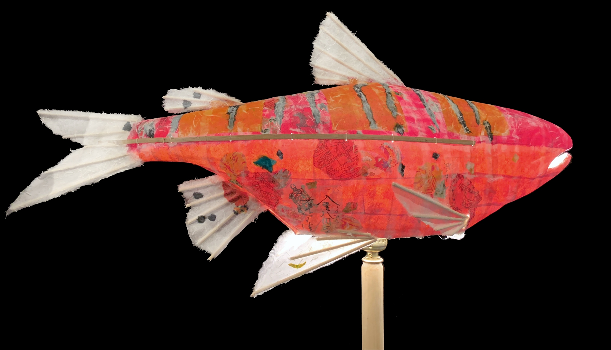 Tiger Stripe Salmon by Elaine Hanowell