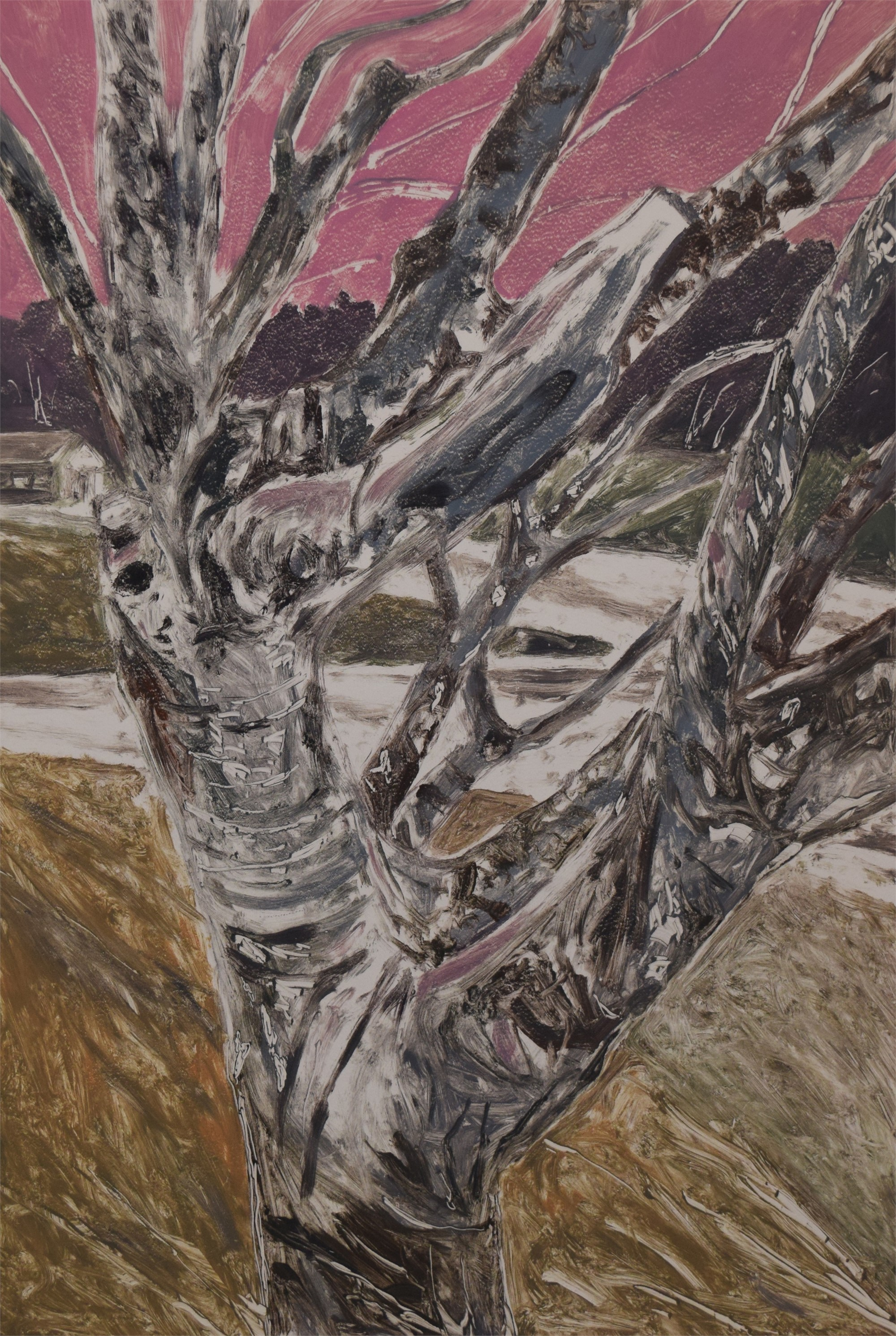 Old Tree in Mexia by Karl E. Hall