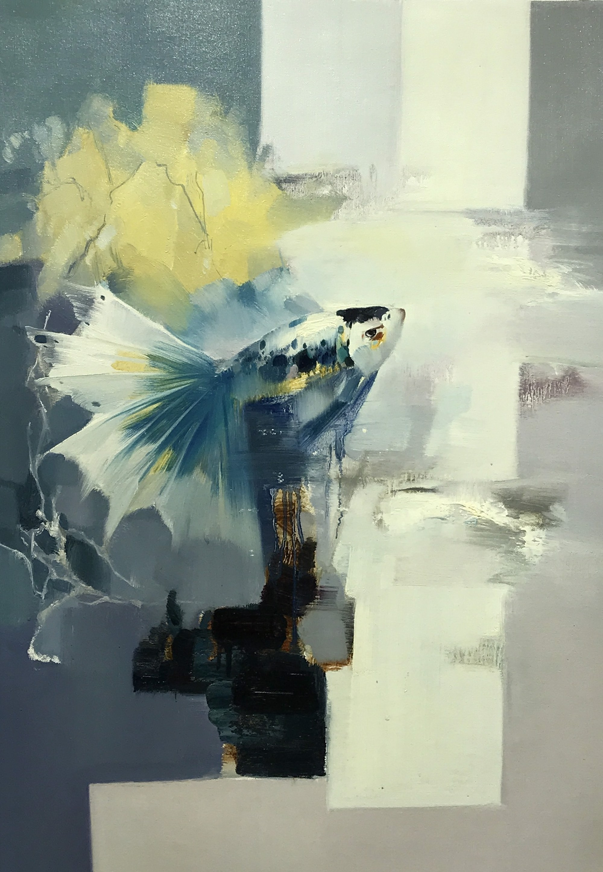 SINGLE FISH by VARIOUS WORKS