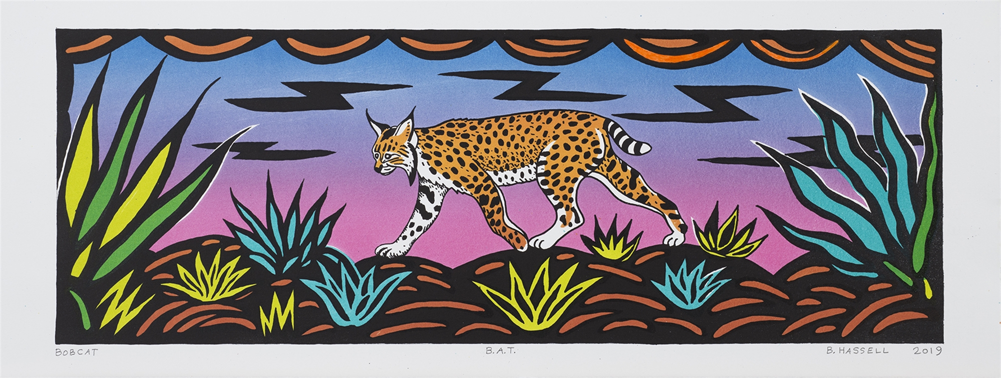 Bobcat by Billy Hassell