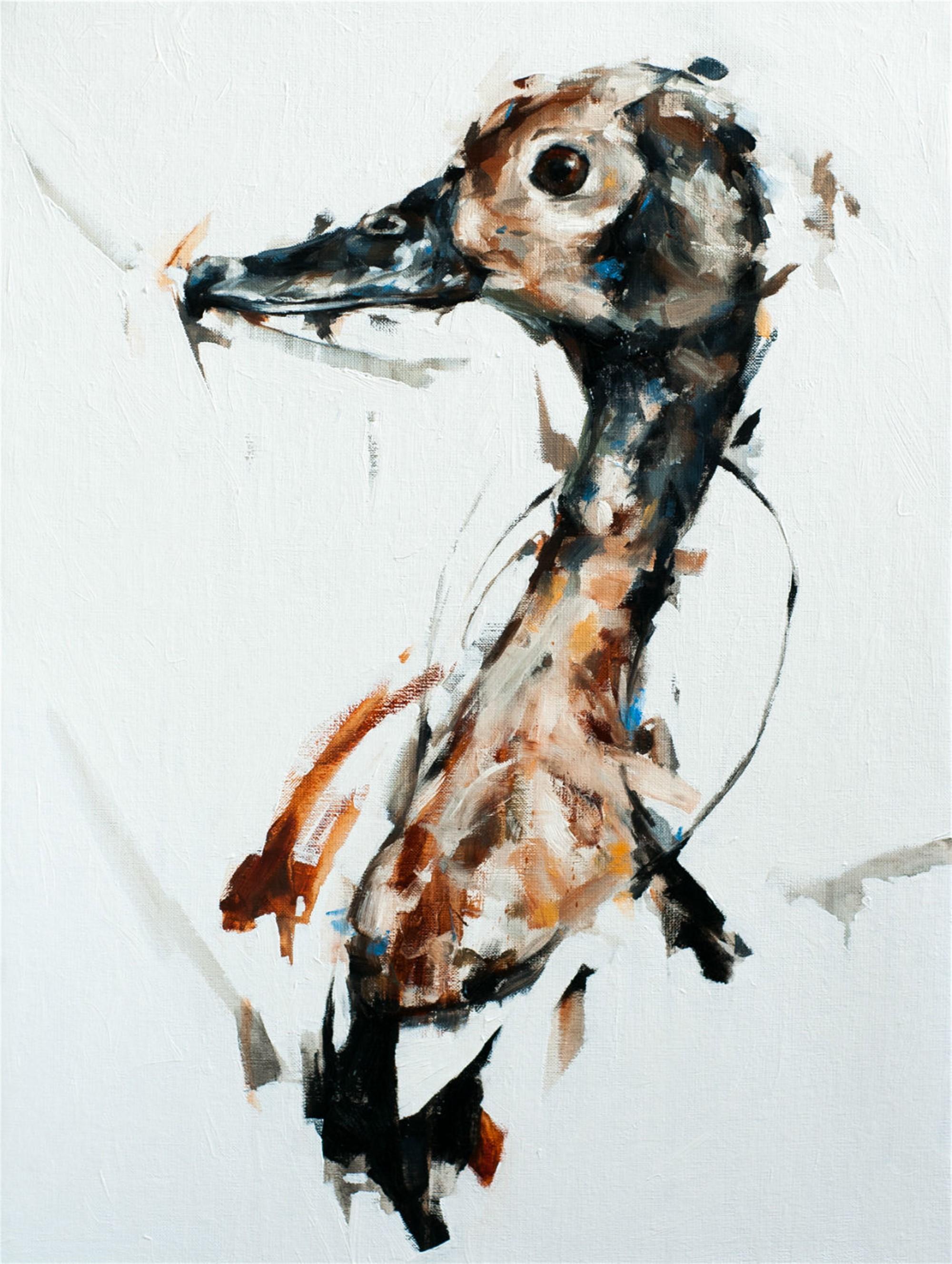 Duck by Thibault Jandot