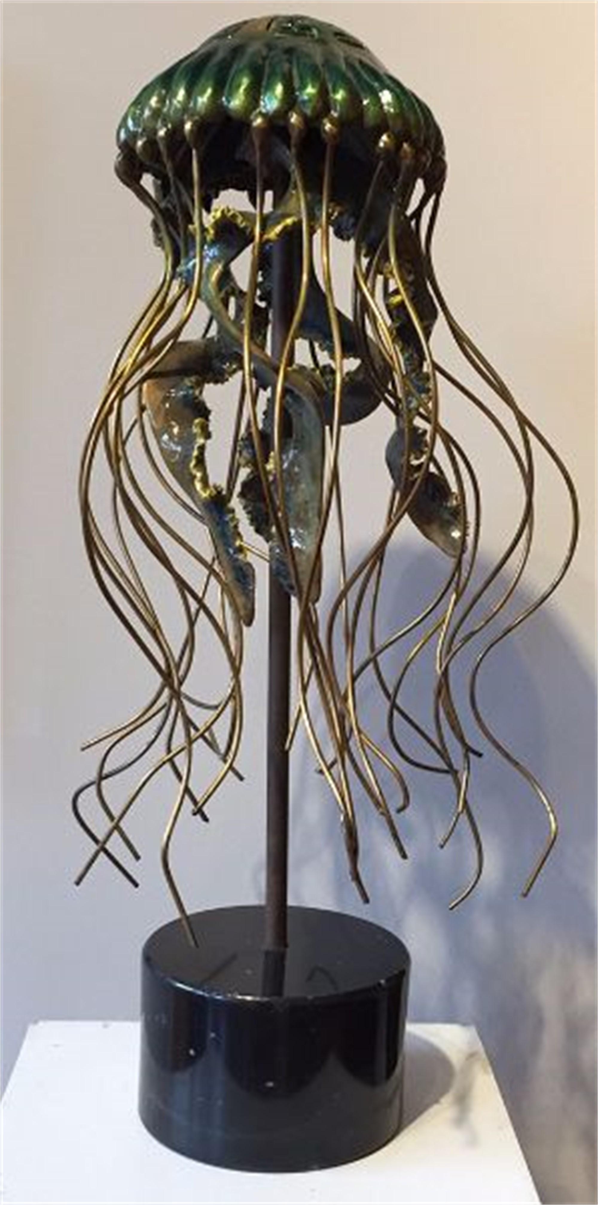 Sea Nettle (Jellyfish) by Scott Penegar