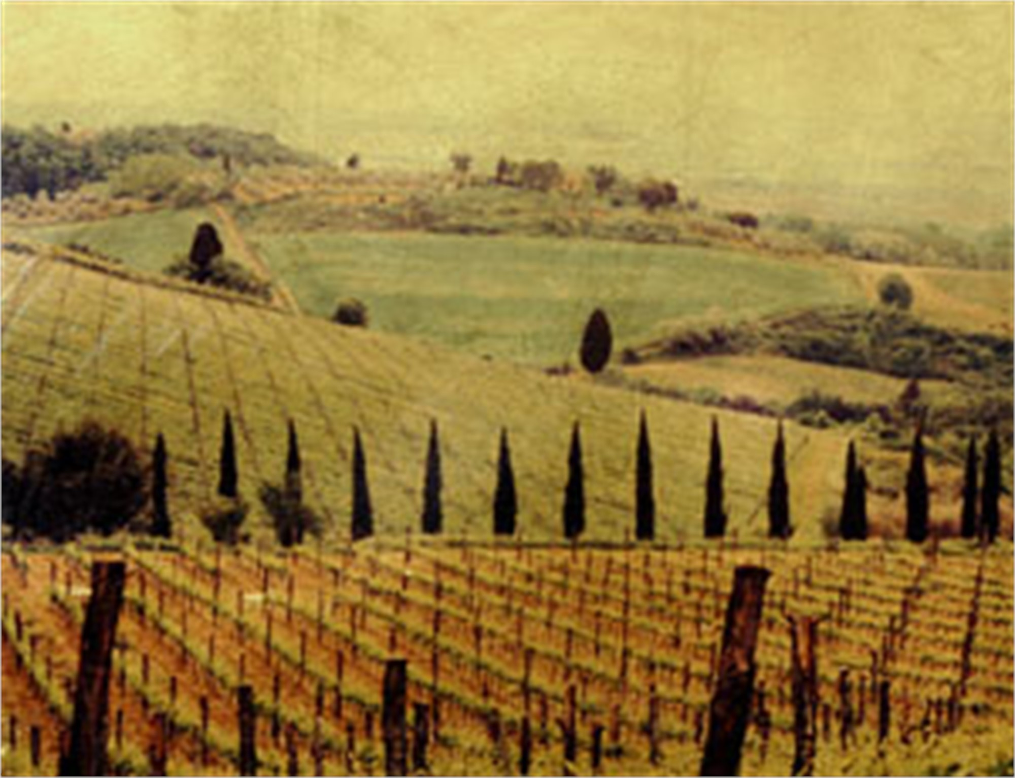 Chianti #3 by Patty Mulligan