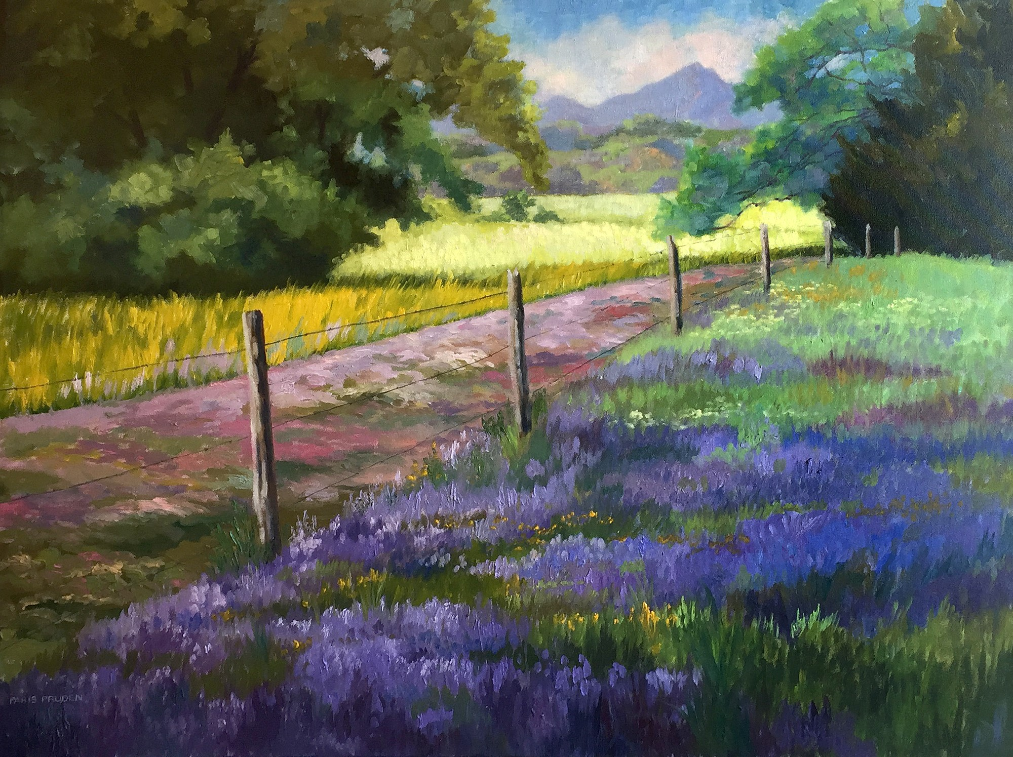 Flowers In The Foothills, 2017 by Nancy Paris Pruden