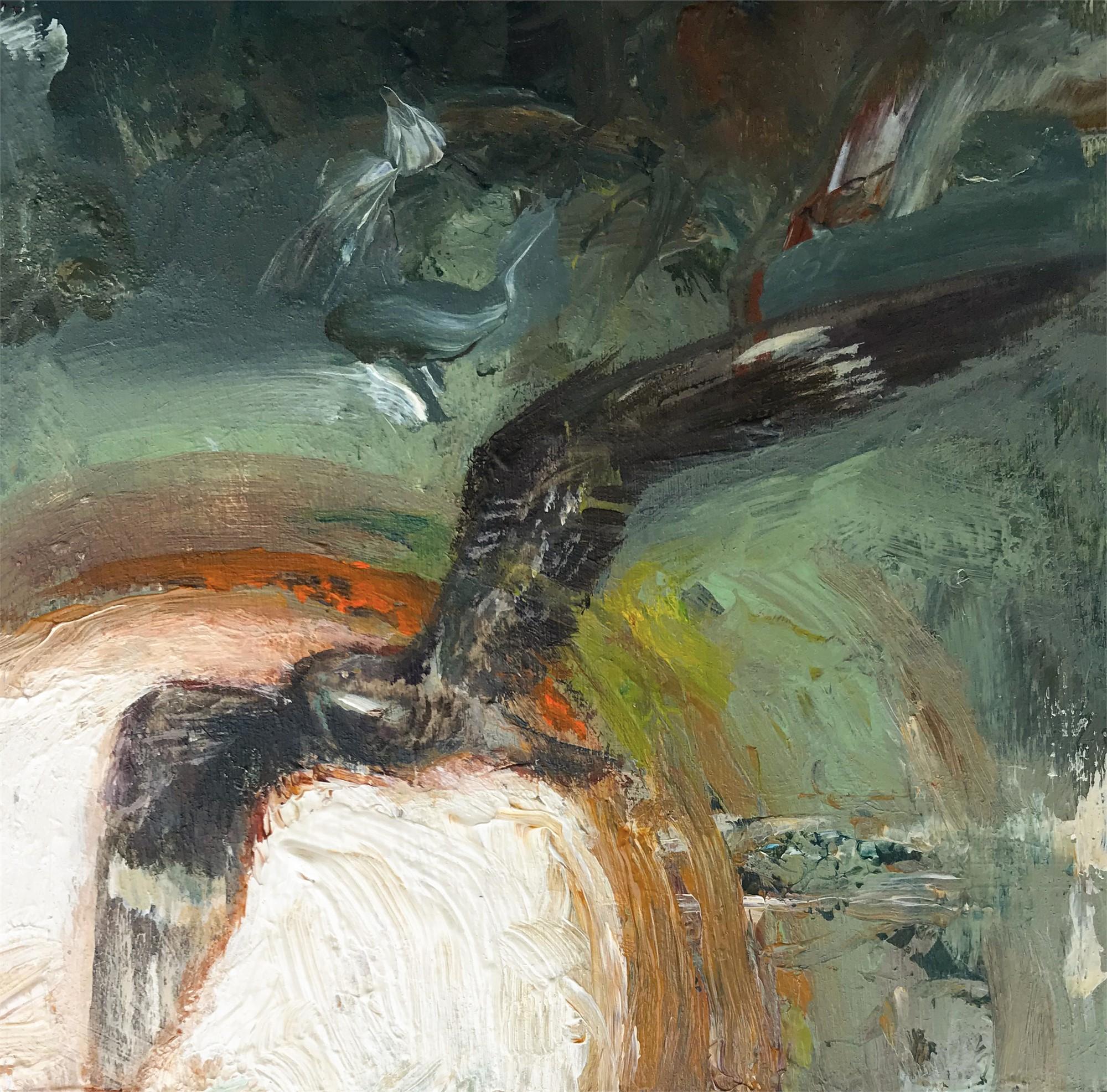 Nightjar by Adam Burke