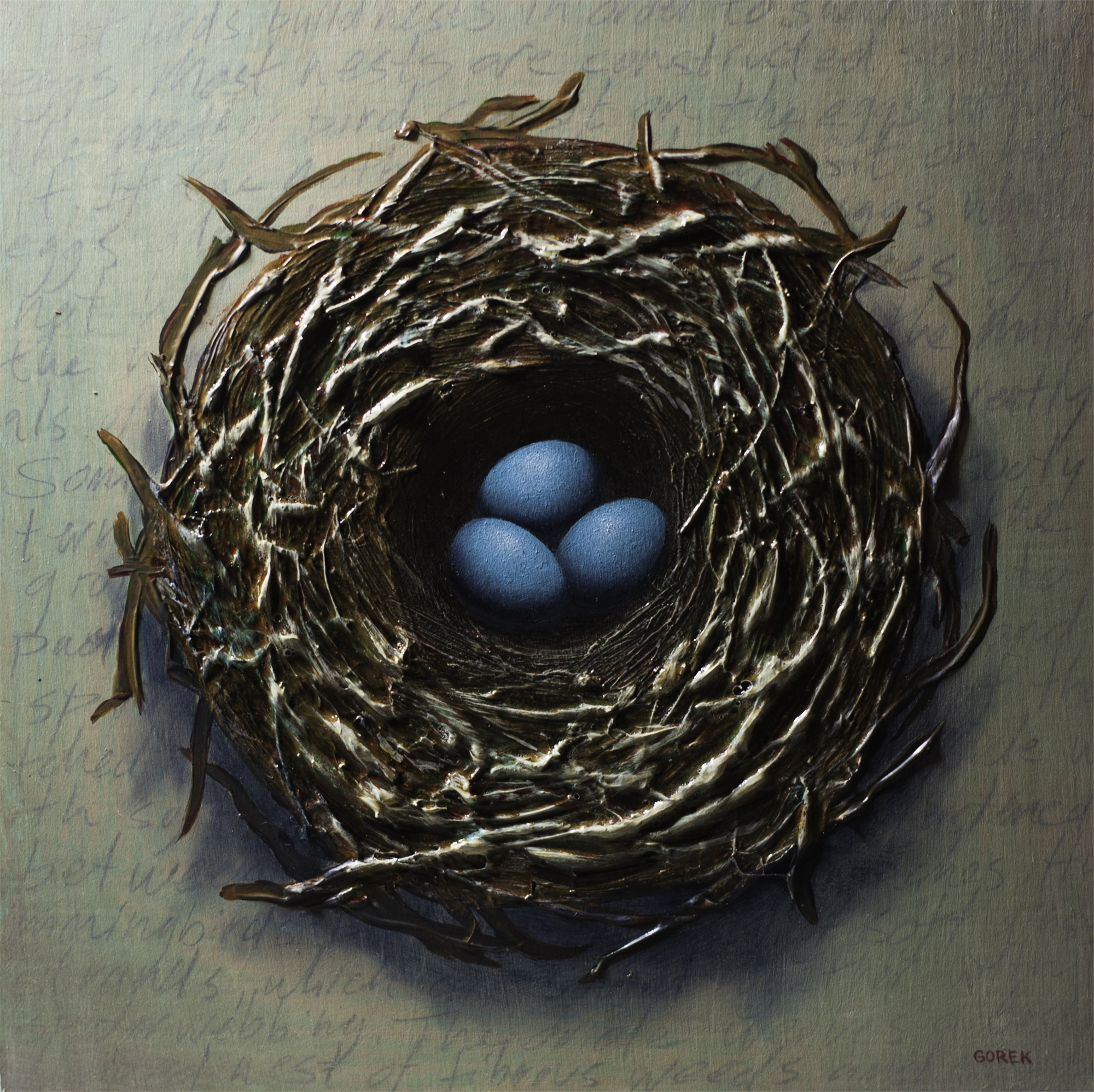 Bird's Nest, Three Eggs by Thane Gorek