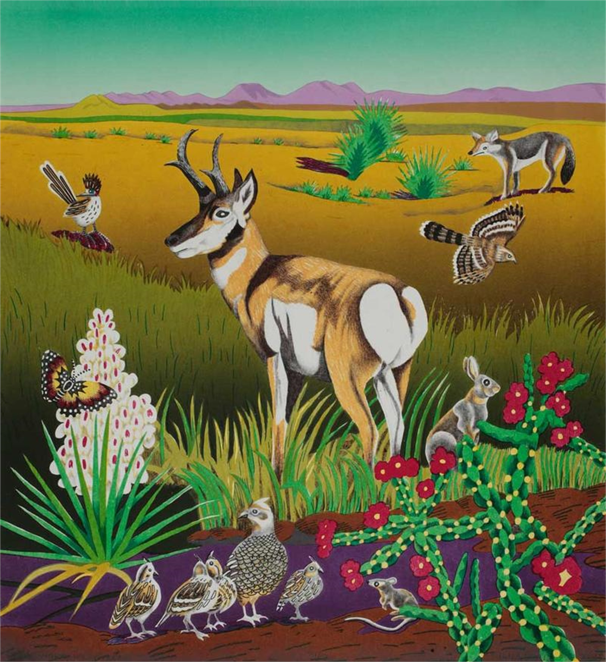 Pronghorn, West Texas - TPWF by Billy Hassell
