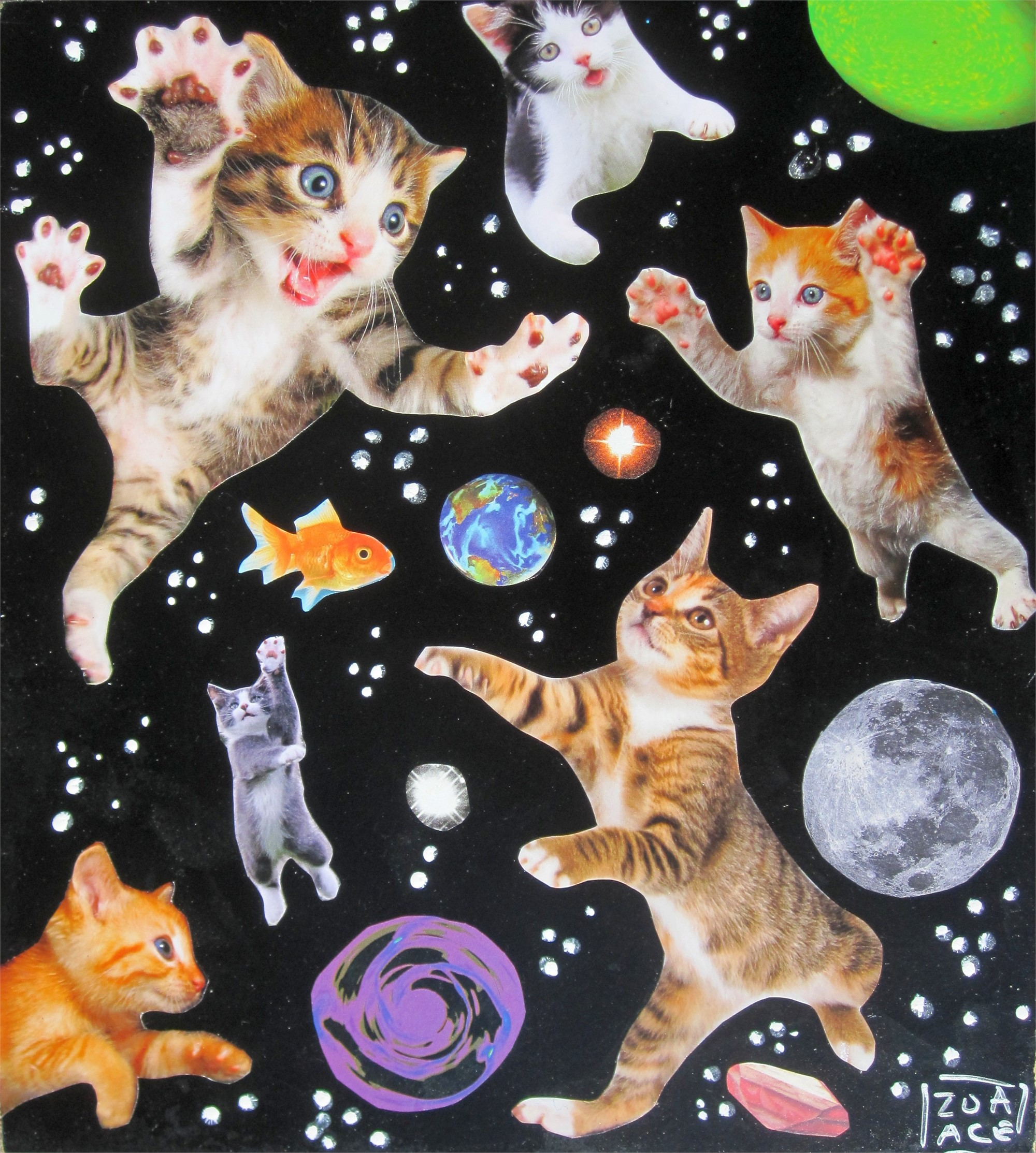 Space Cats by Zoa Ace