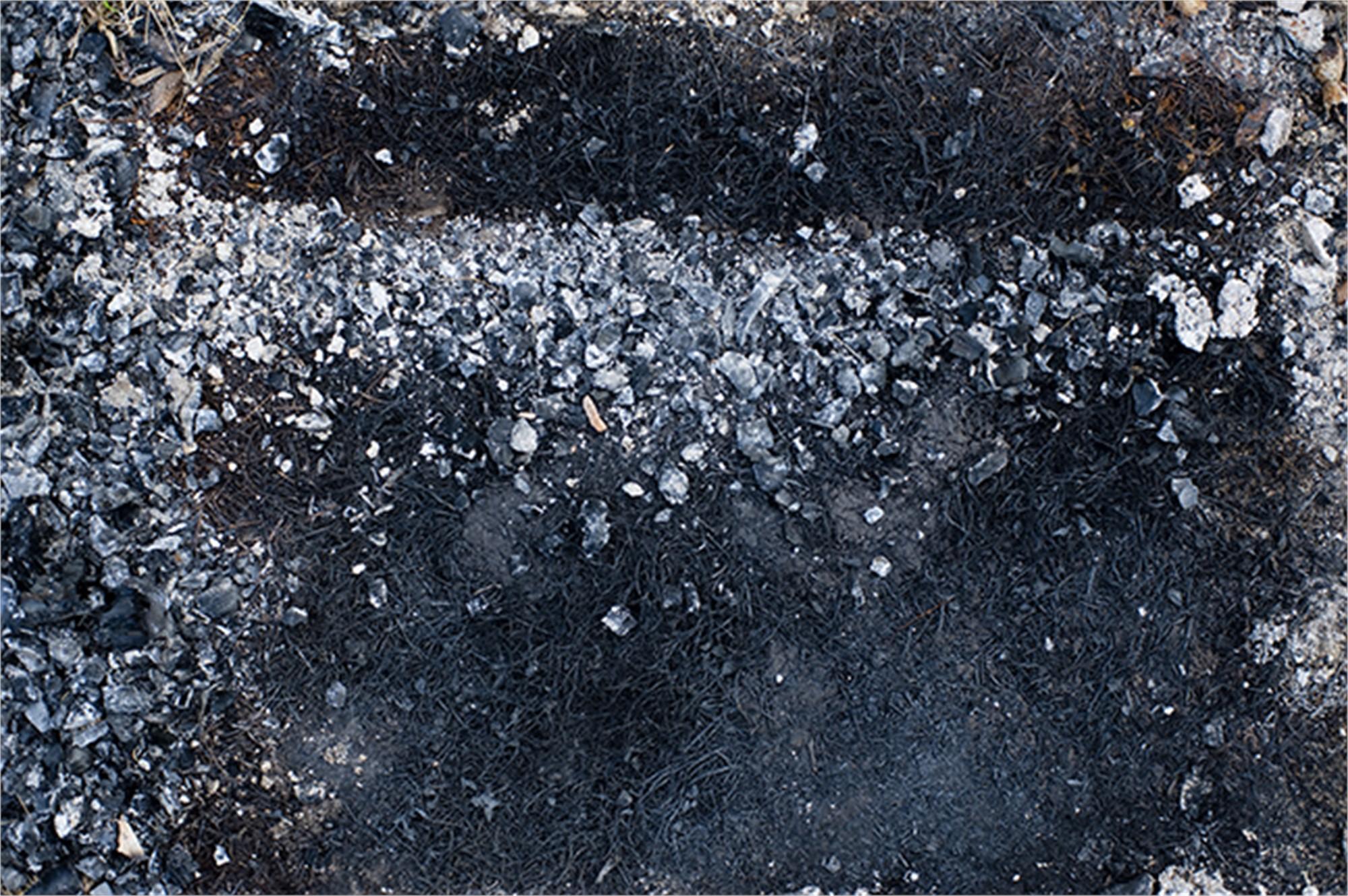 Abandoned Ashes #1 by Frank Sherwood White