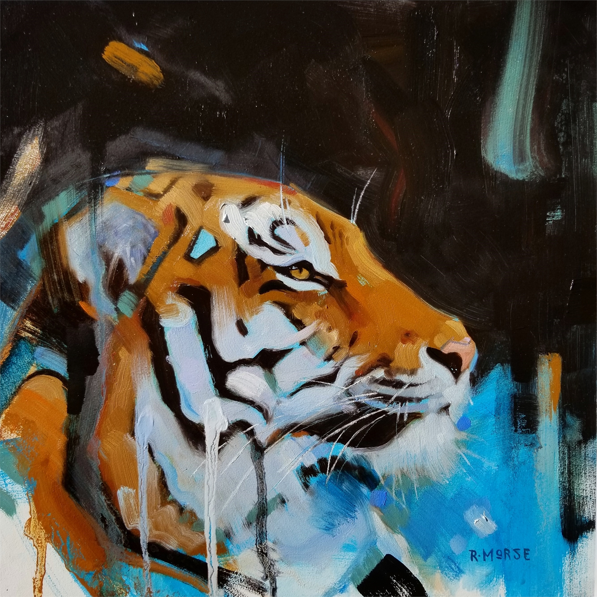 Tiger by Ryan Morse