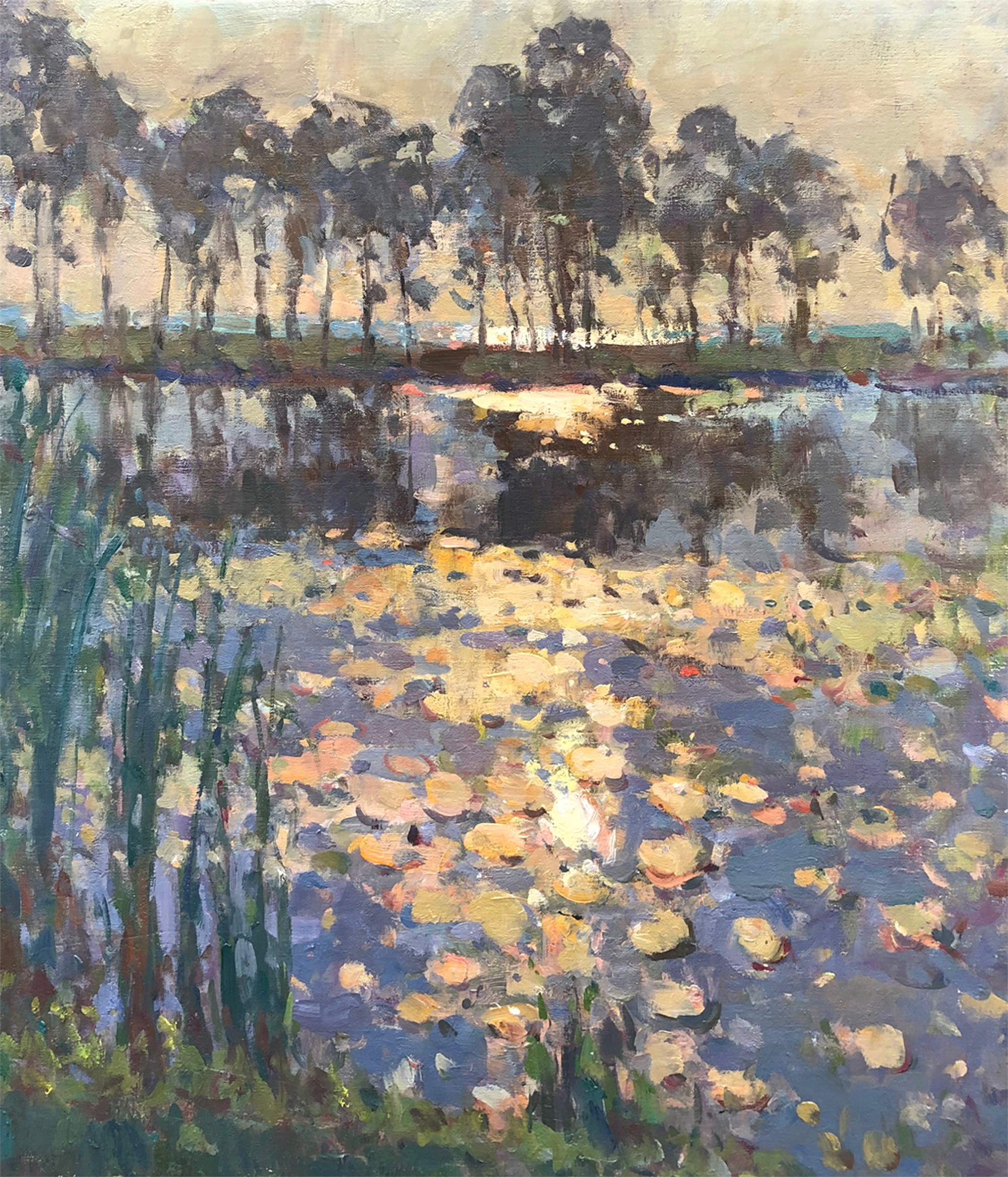 Gleaming Waterlilies by Richard Oversmith