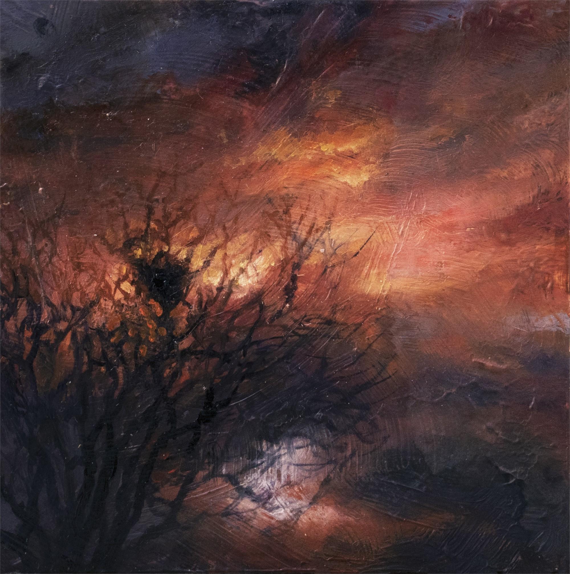Nest by Adam Burke