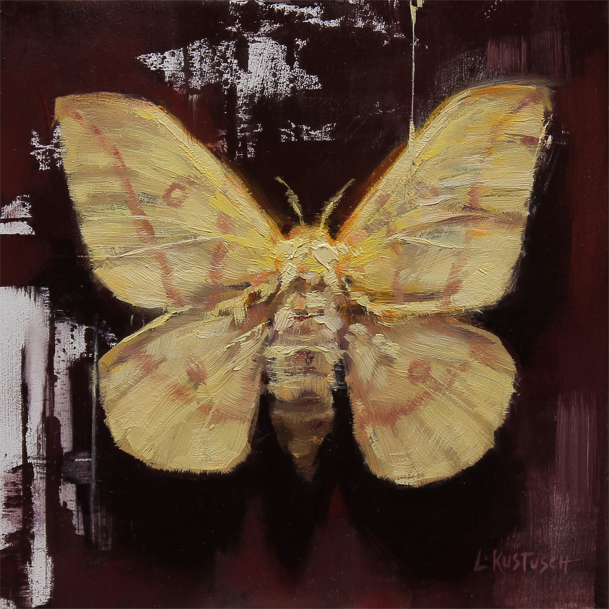 Yellow Imperial Moth by Lindsey Kustusch